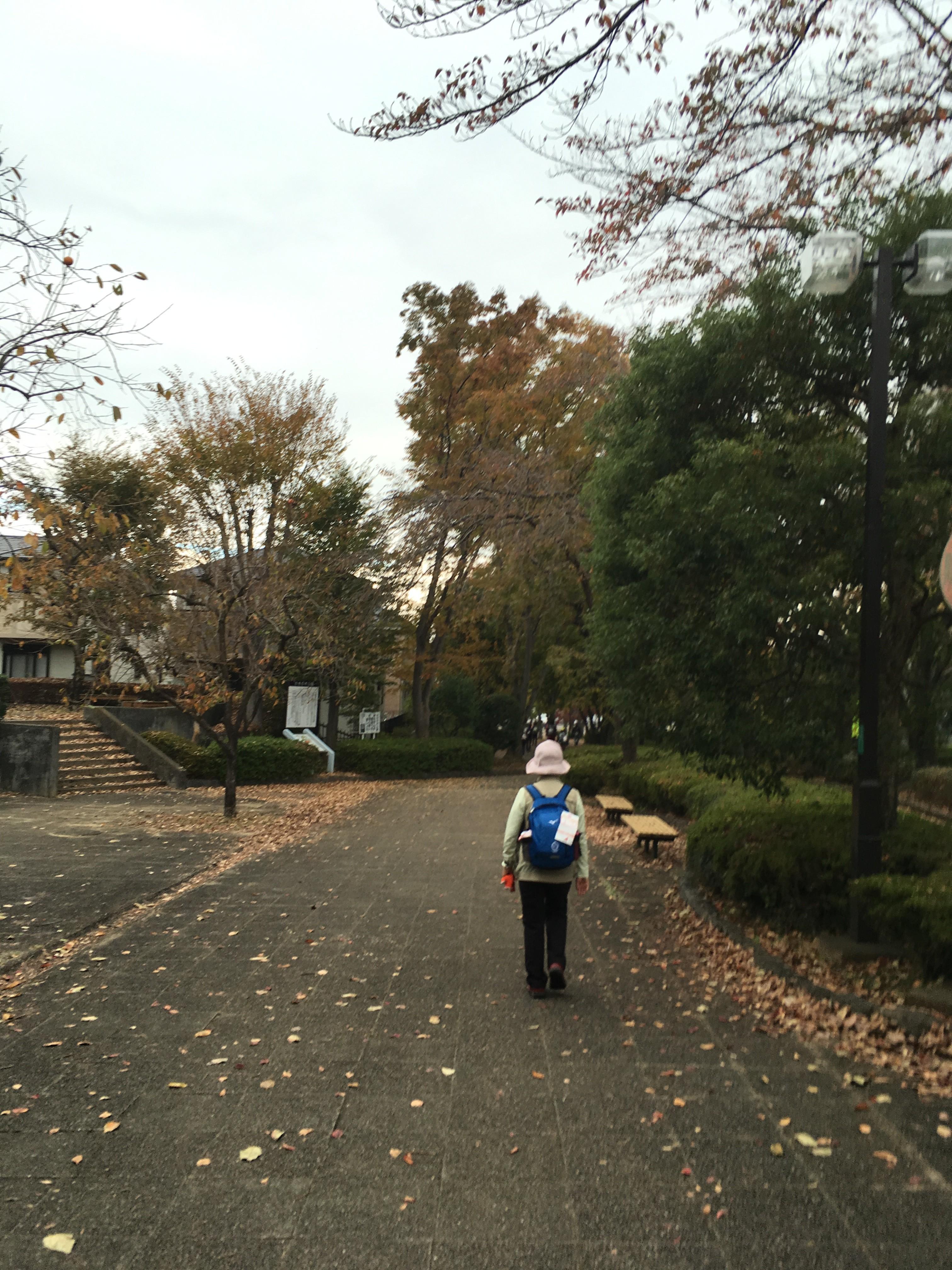 かきの木公園