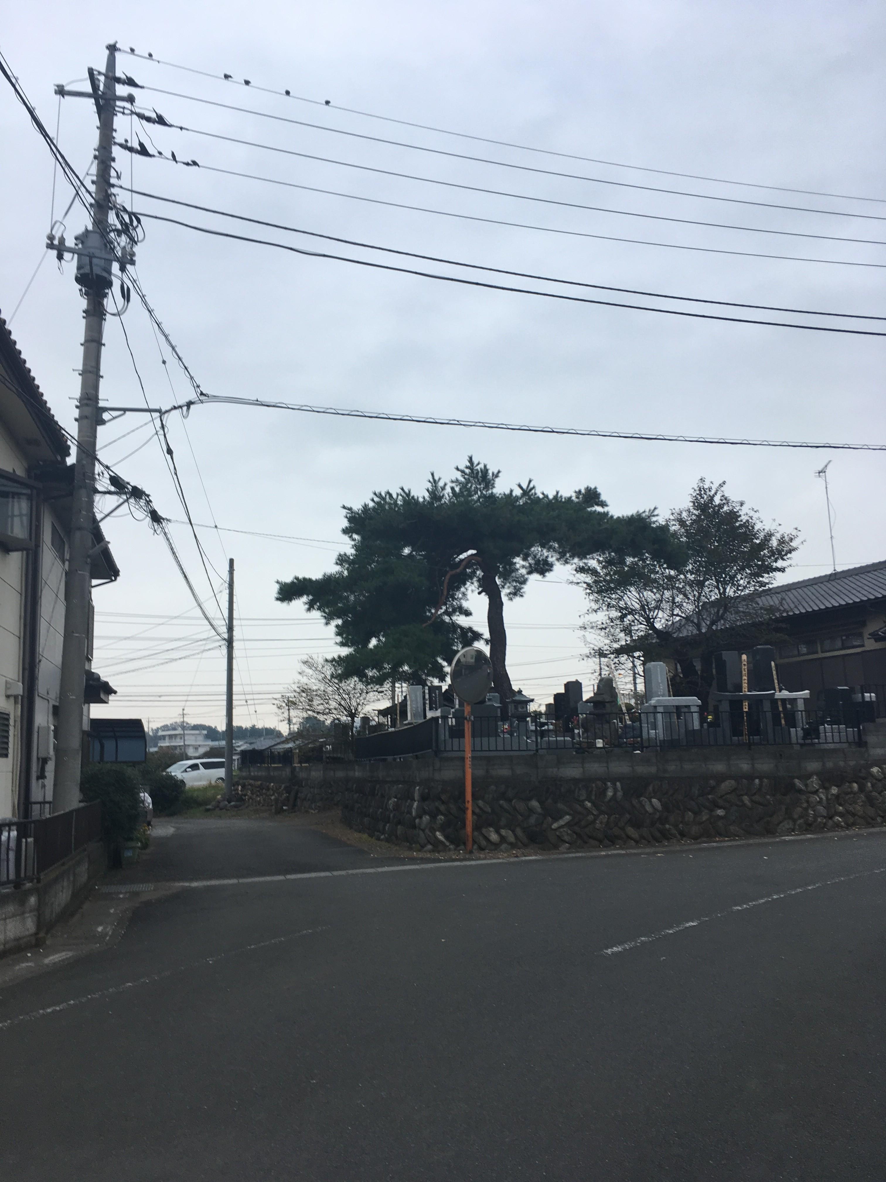 上野本1297−4周辺