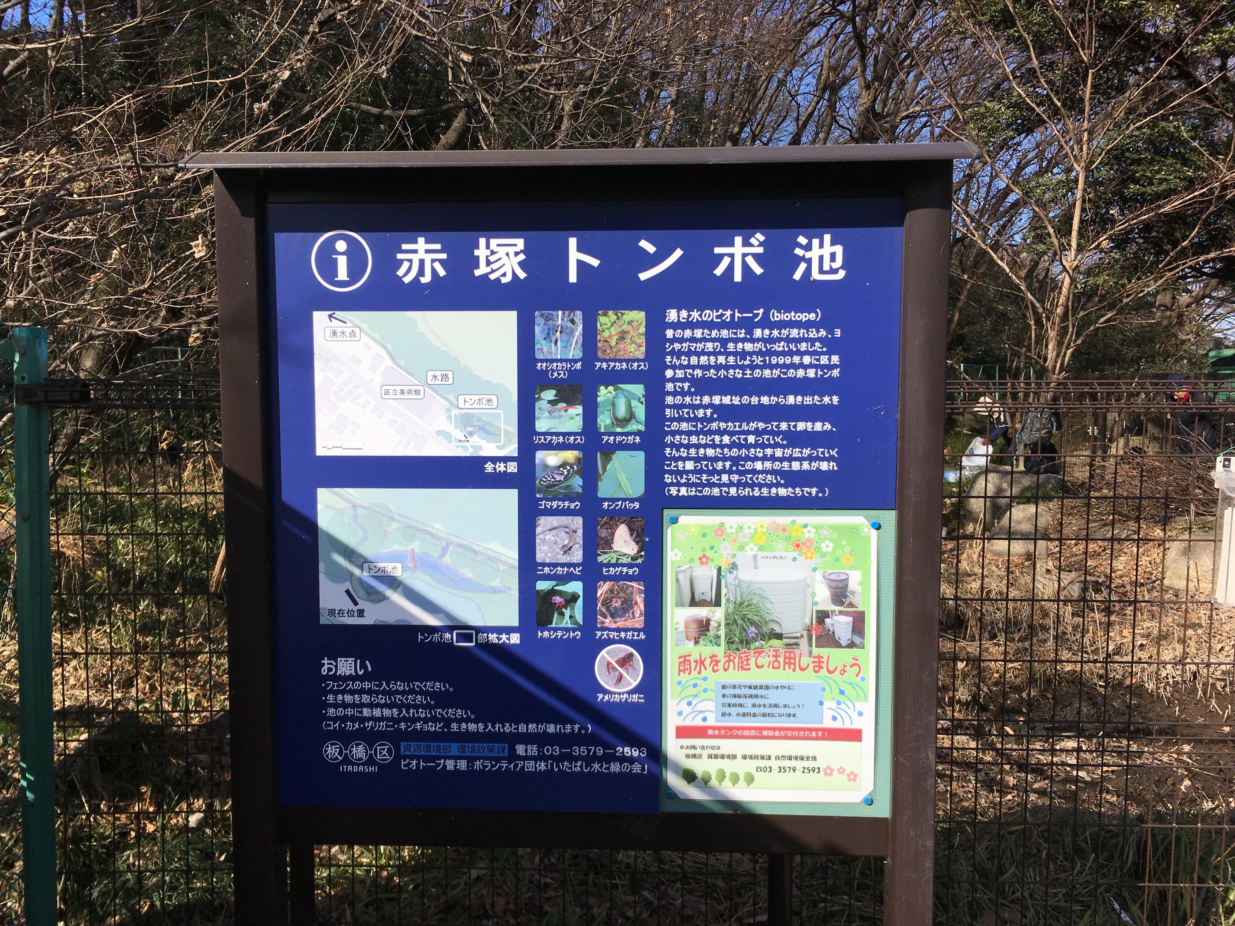 赤塚溜池公園赤塚トンボ池