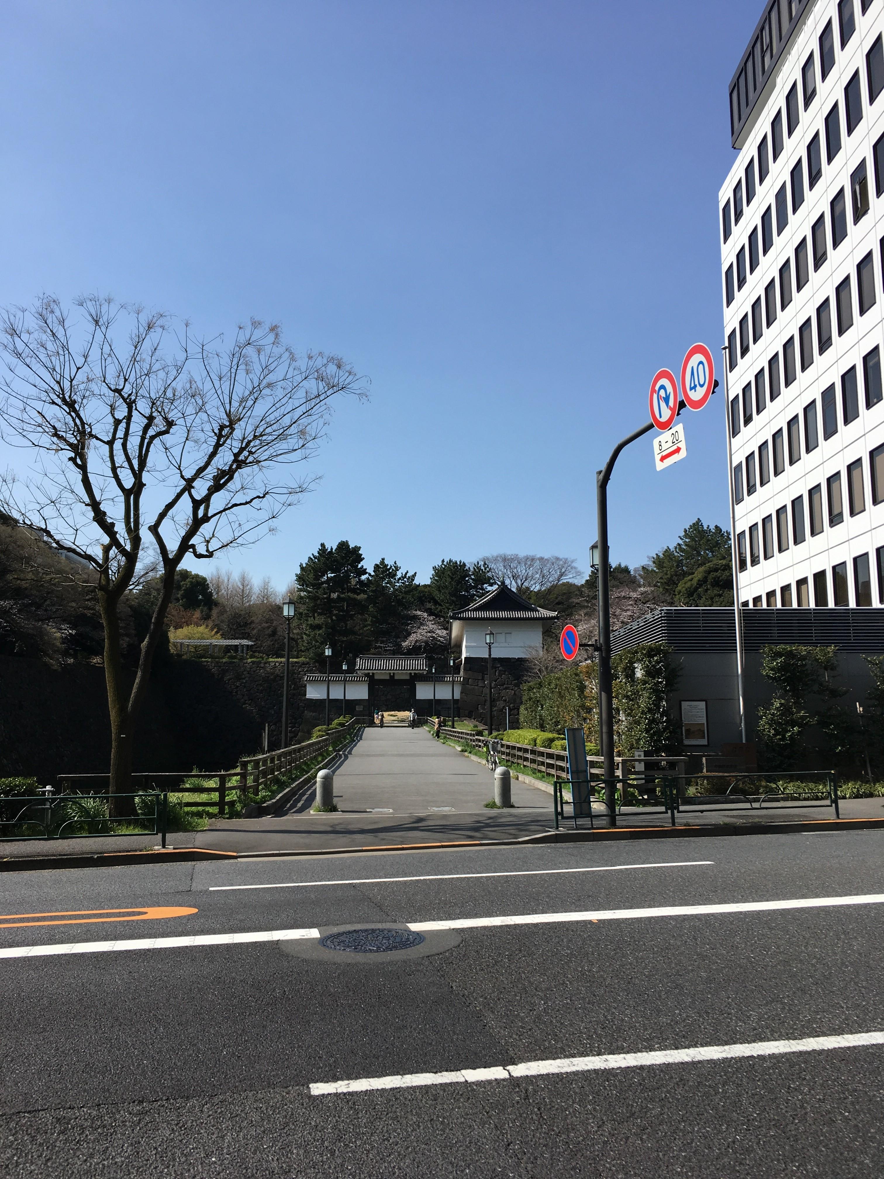 千代田区役所から清水門を望む