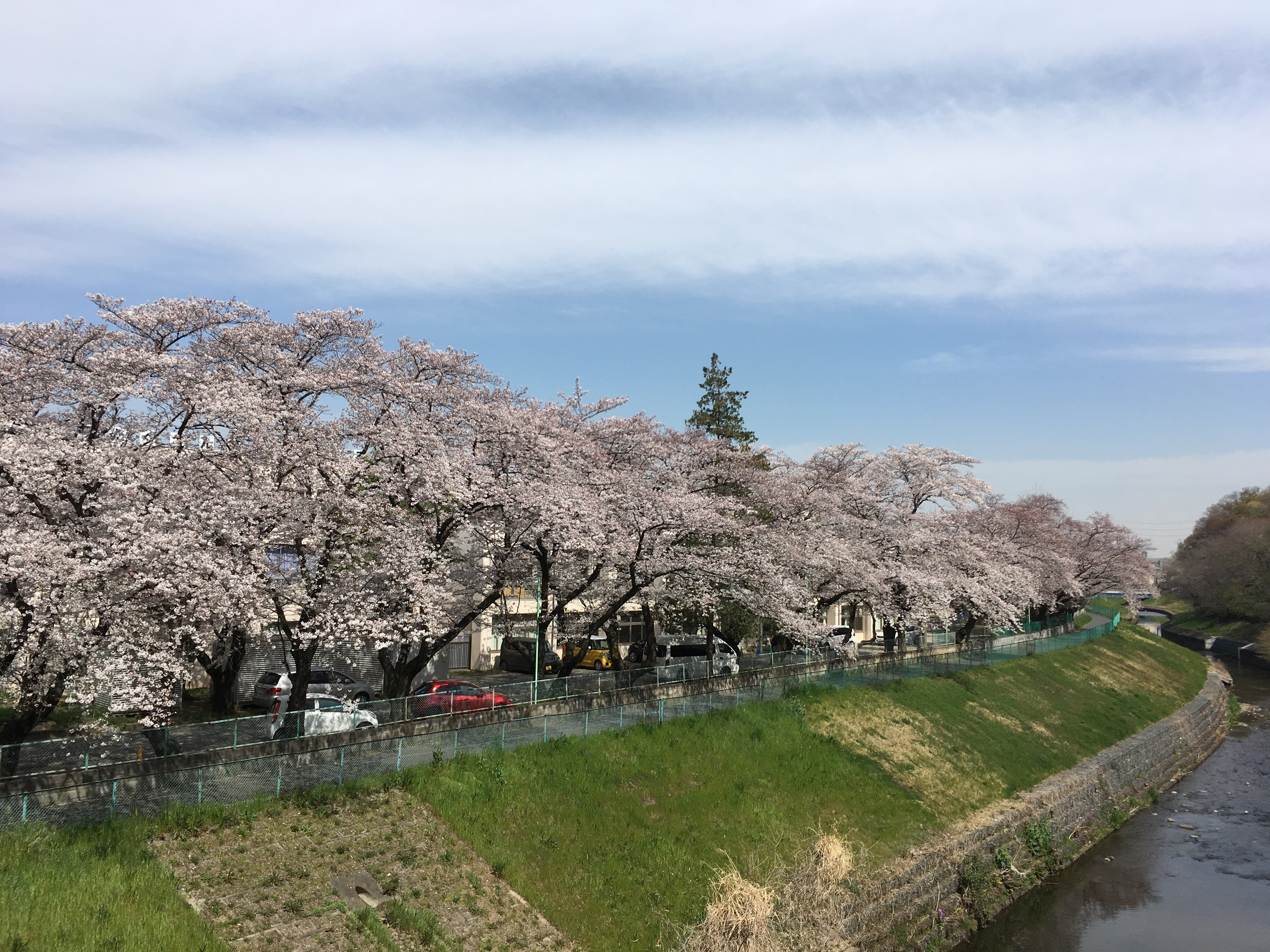 旧市場坂橋から黒目川遊歩道