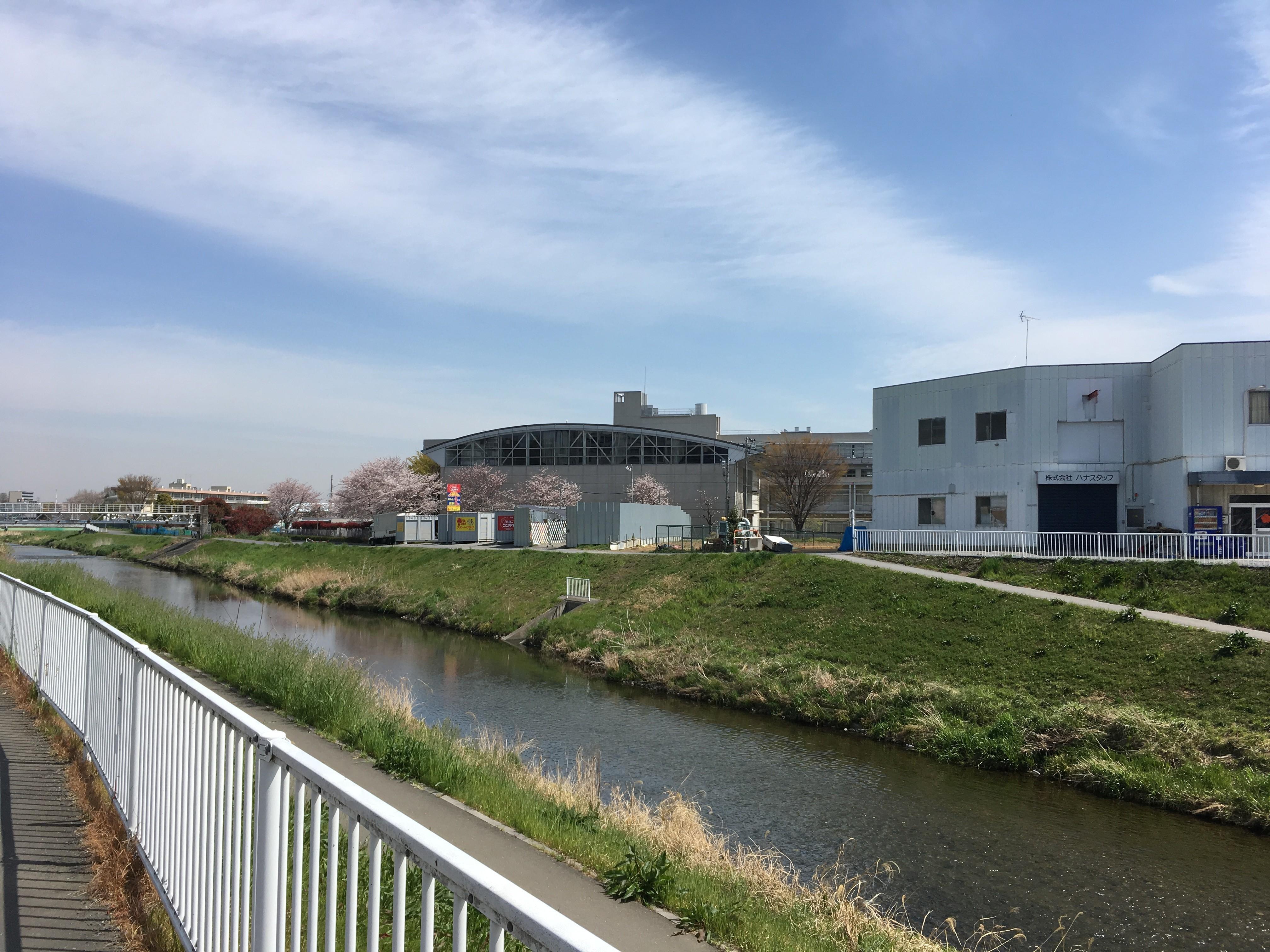 黒目川遊歩道から右岸の風景