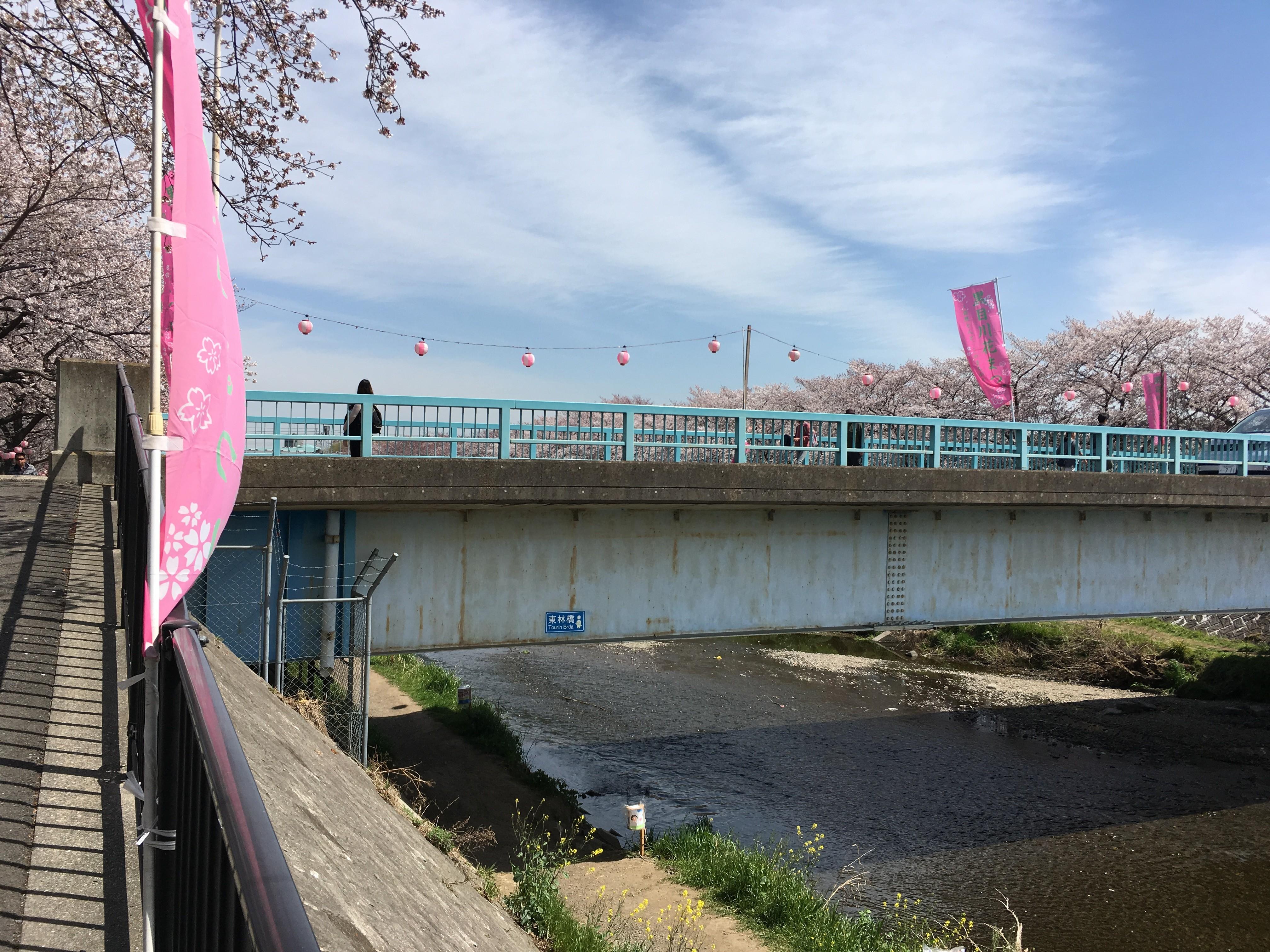 黒目川遊歩道の東林橋