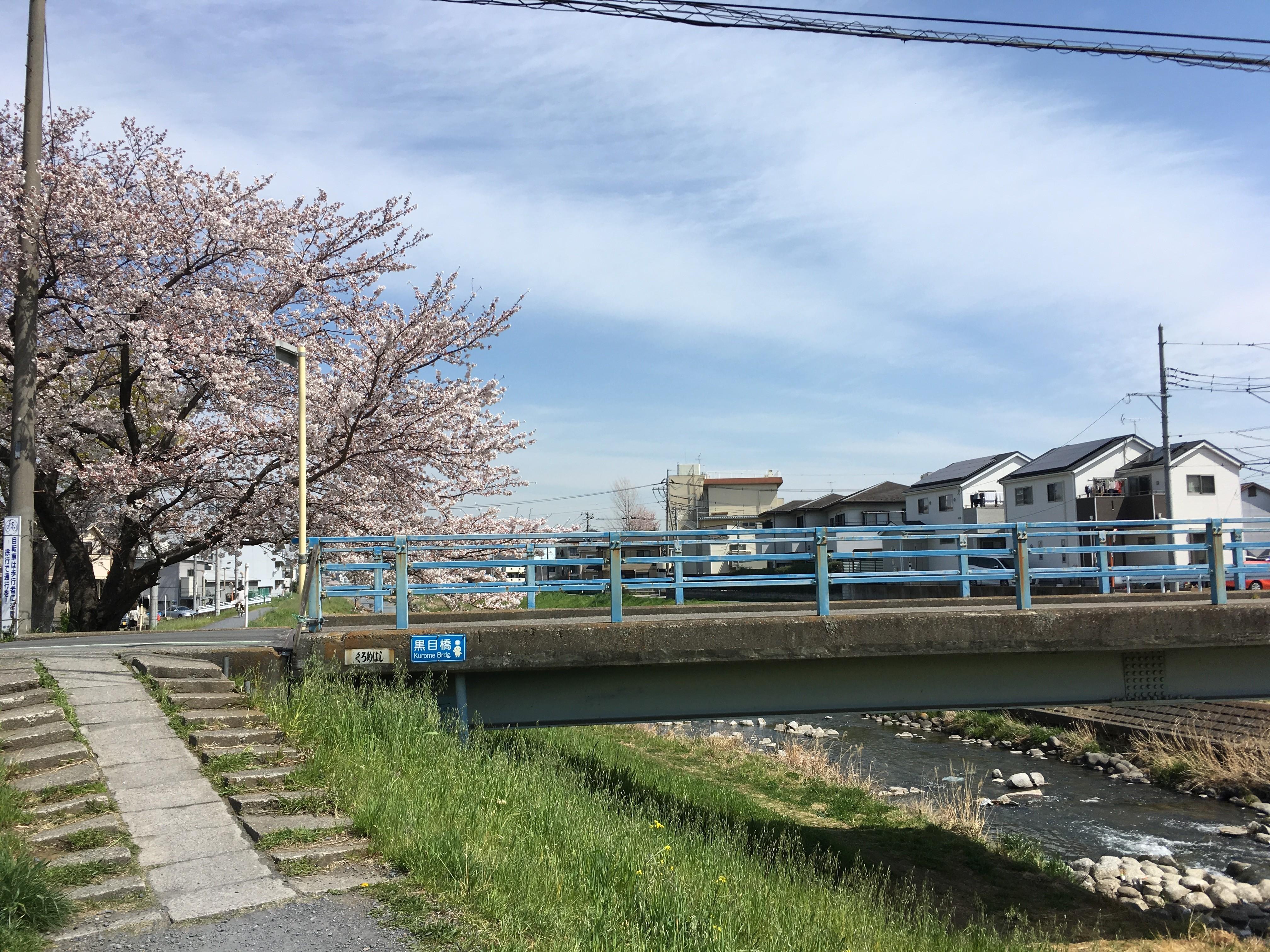 黒目川遊歩道の黒目橋