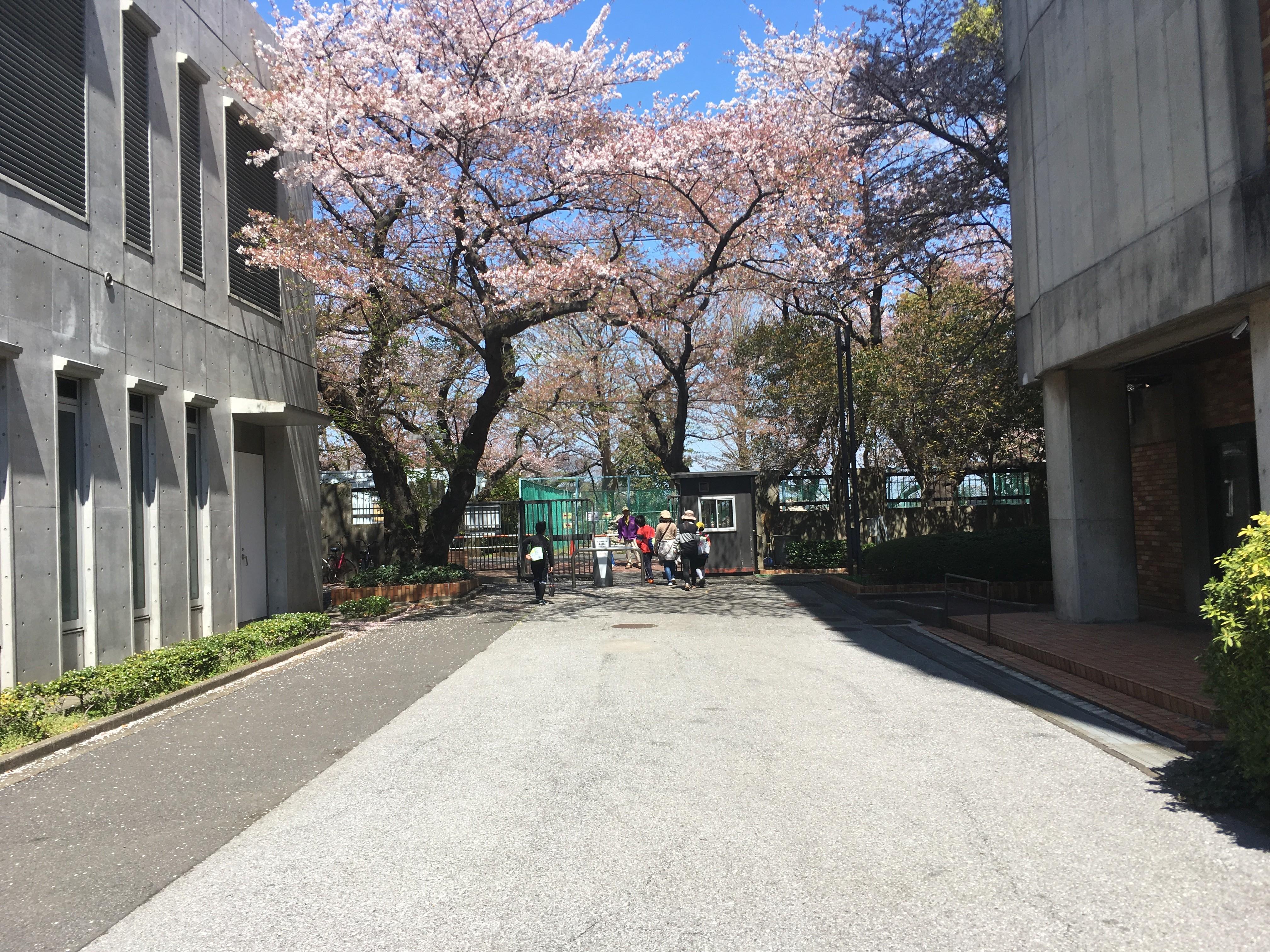 千葉商科大学付属図書館