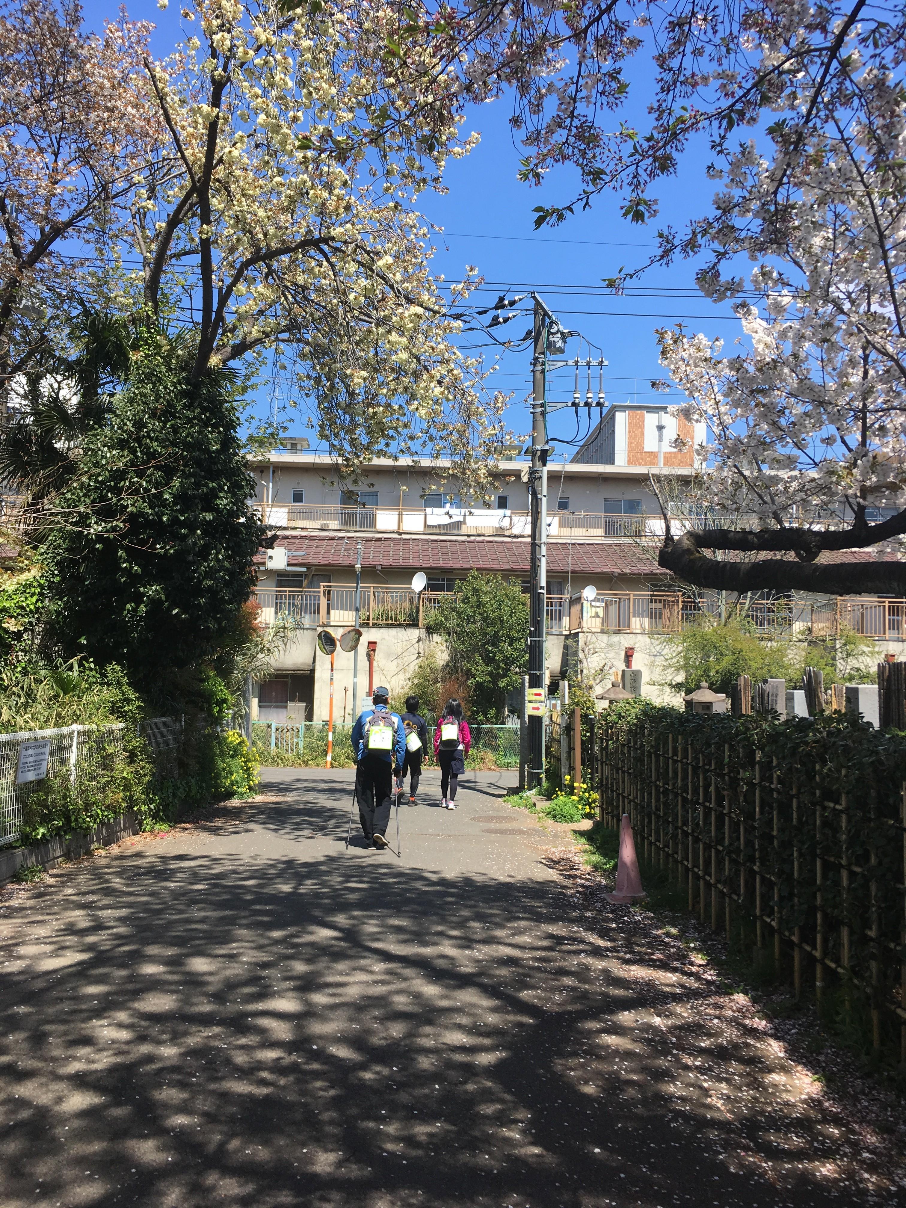国府台県営住宅(B)児童遊園地