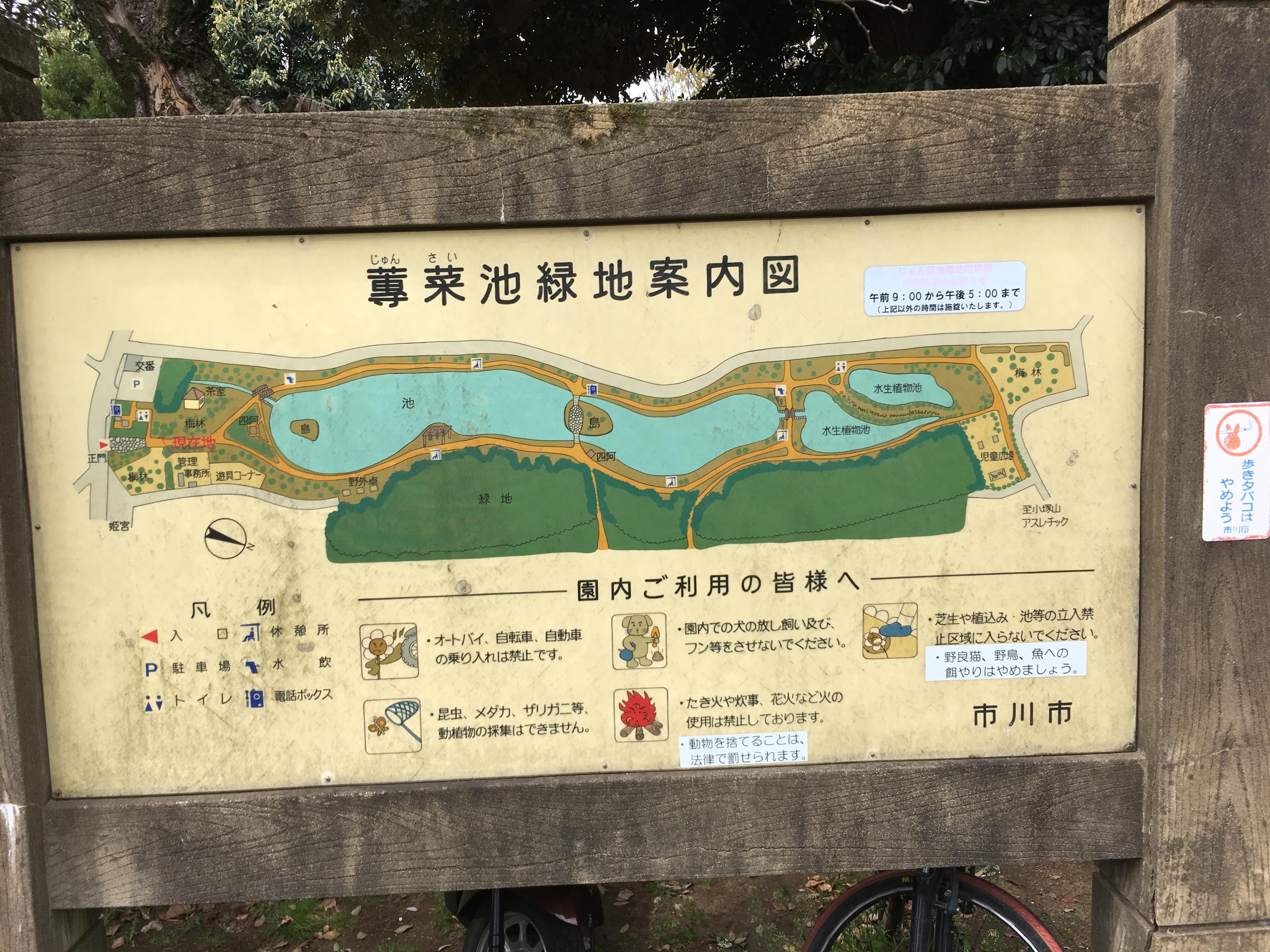 じゅん菜池緑地案内図