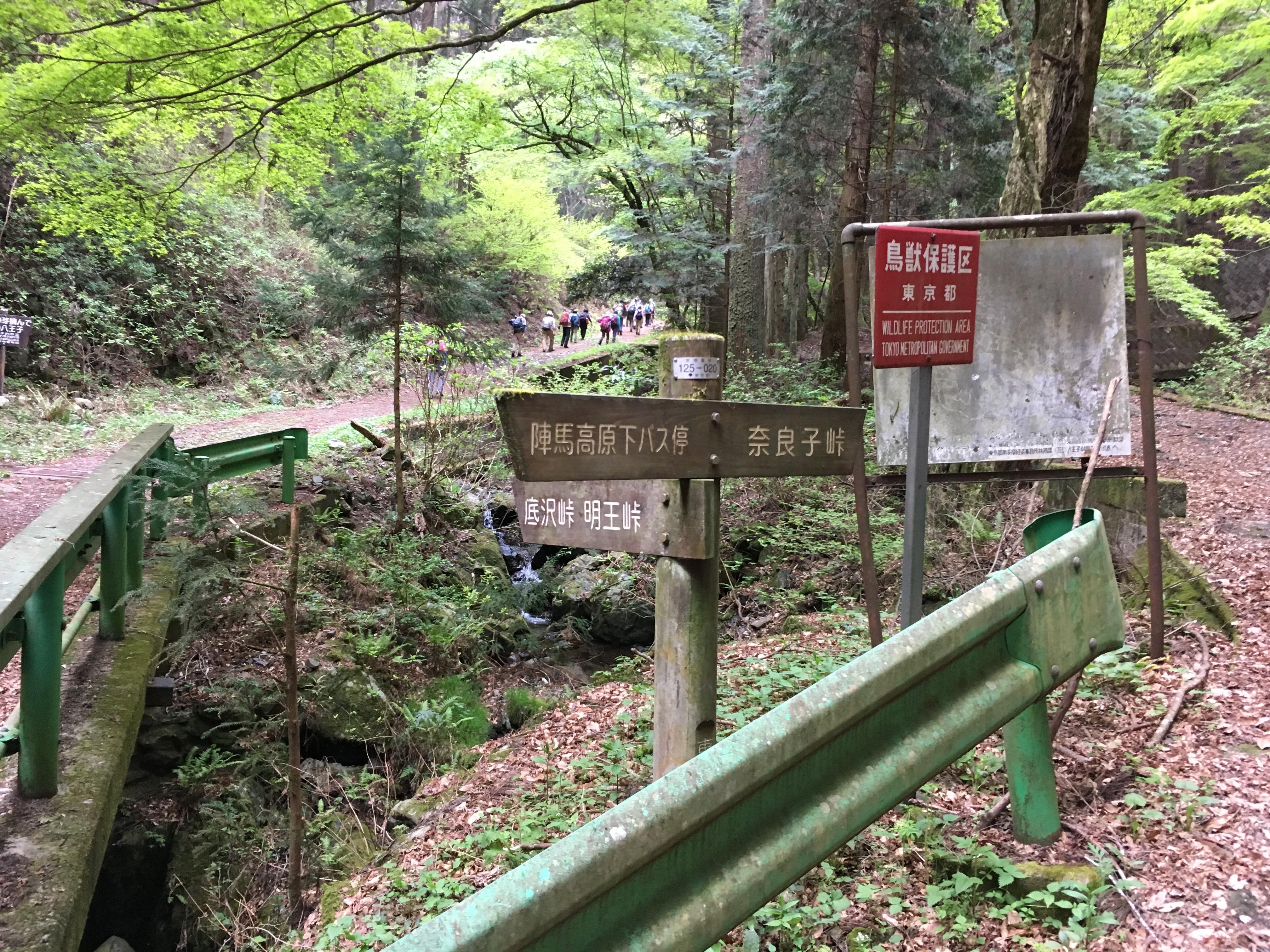陣場高原下バス停↑明王林道(→底沢峠)→奈良子峠