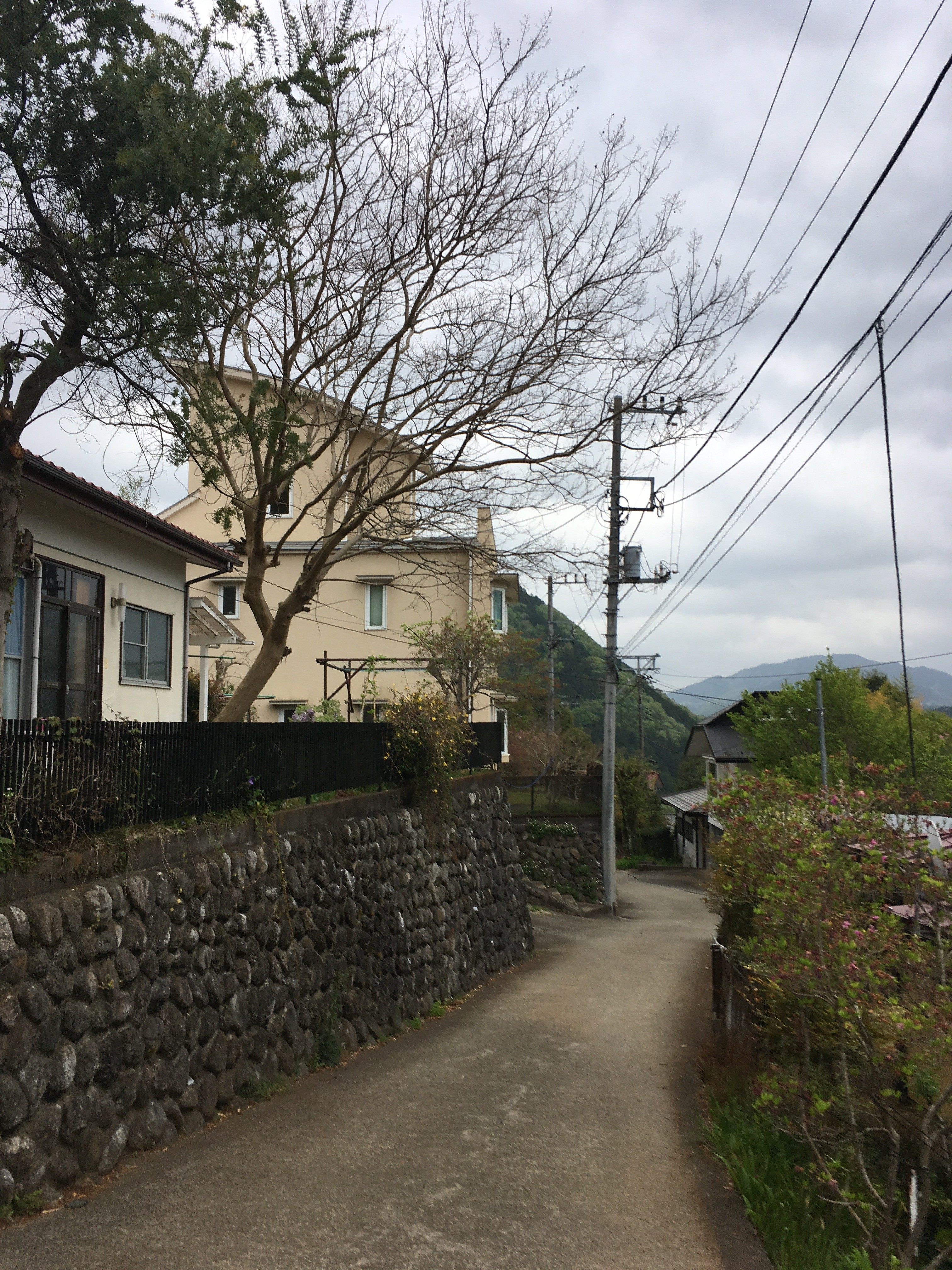 陣場登山口バス停