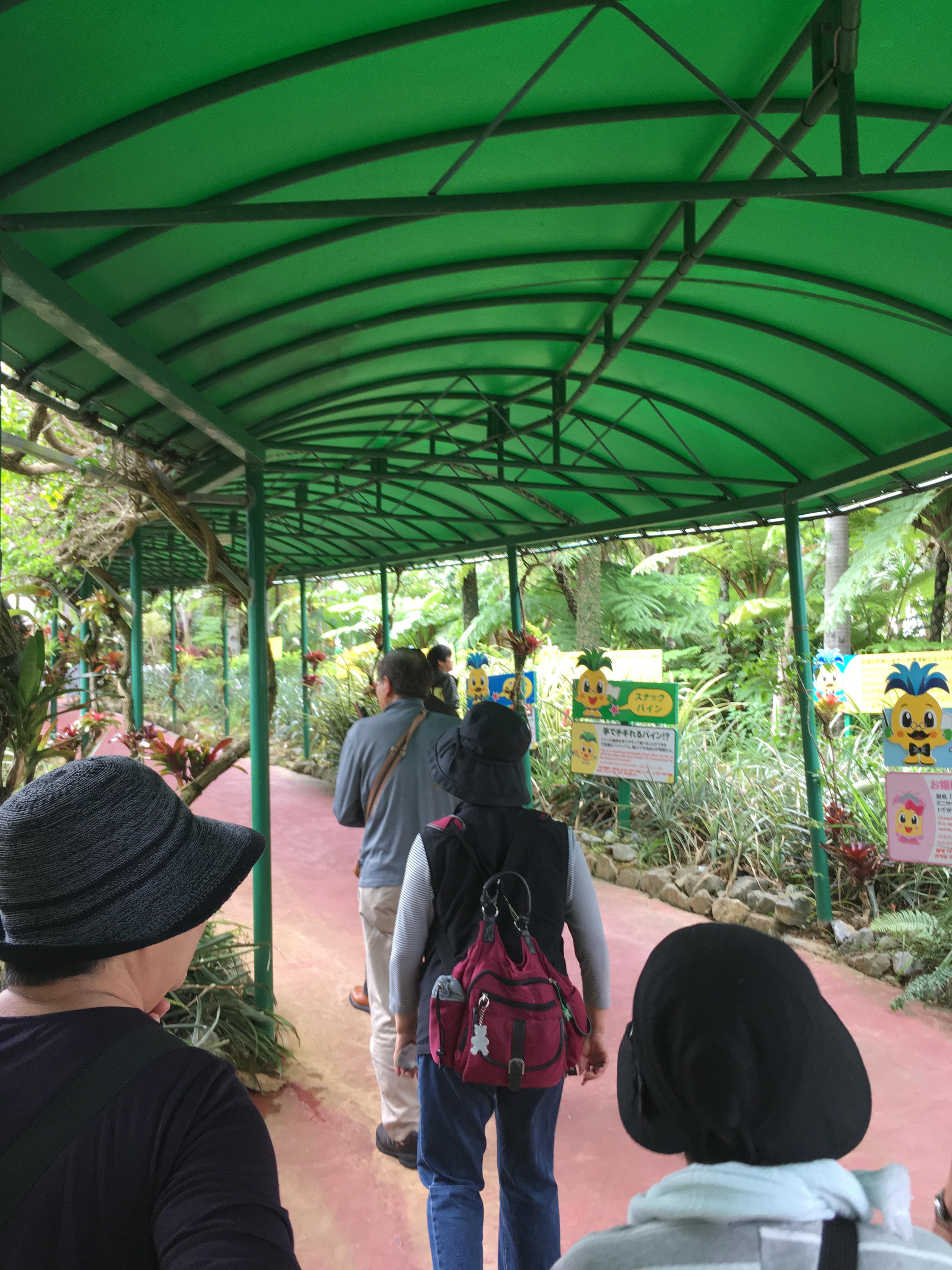 ナゴパイナップルパーク