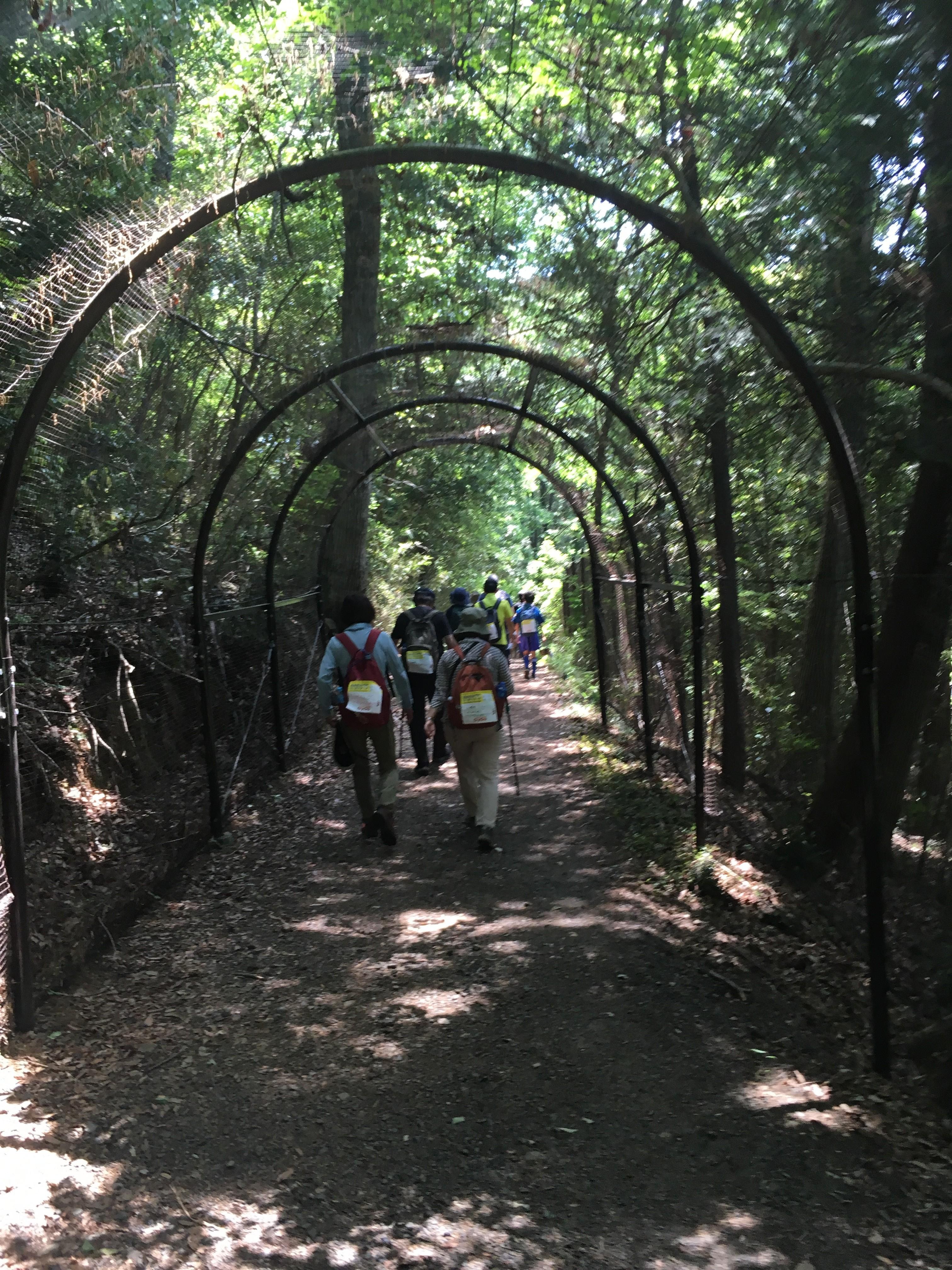 武蔵丘ゴルフコース内遊歩道