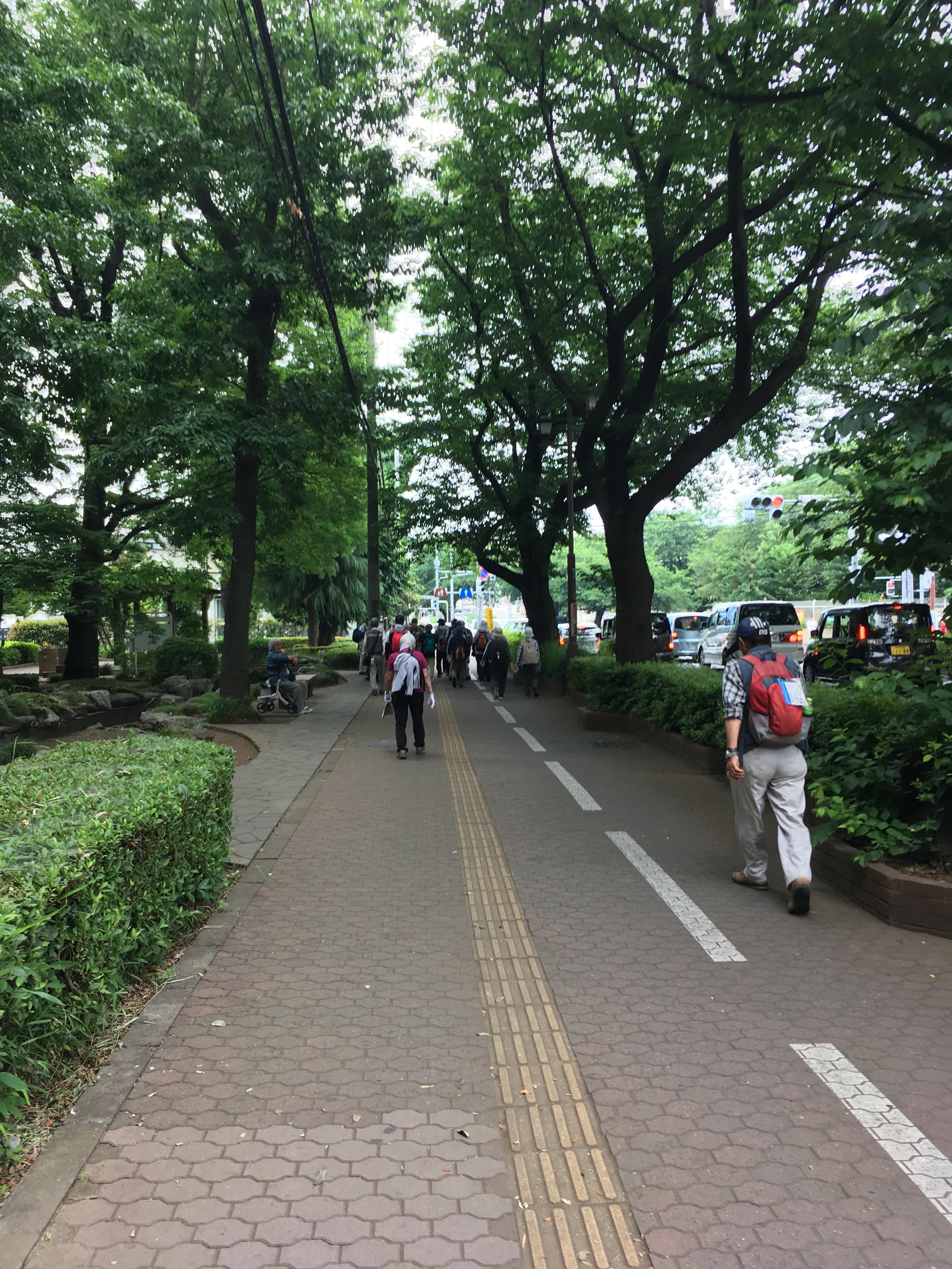 谷津の森公園(ゴール)