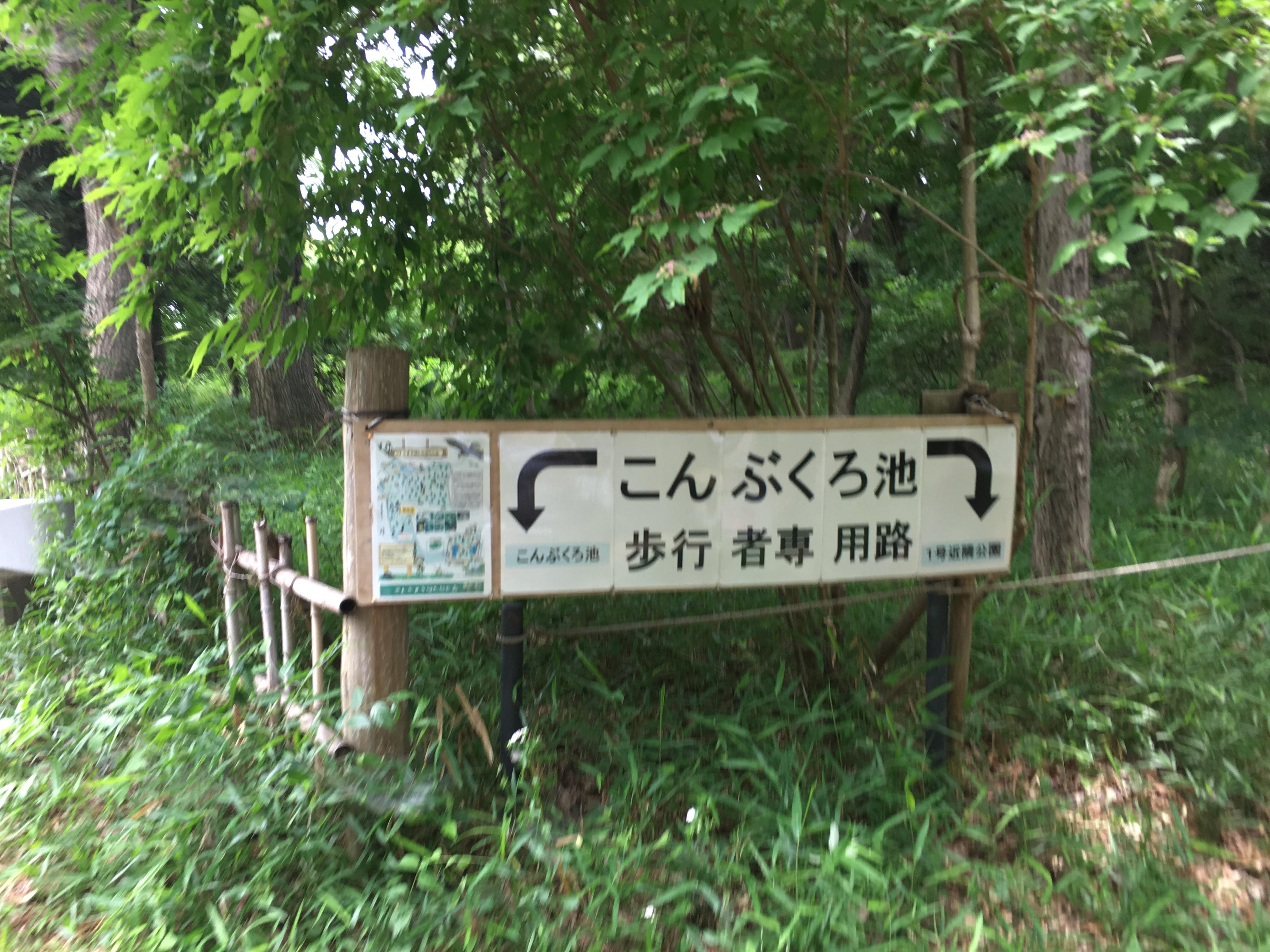 こんぶくろ池自然博物公園