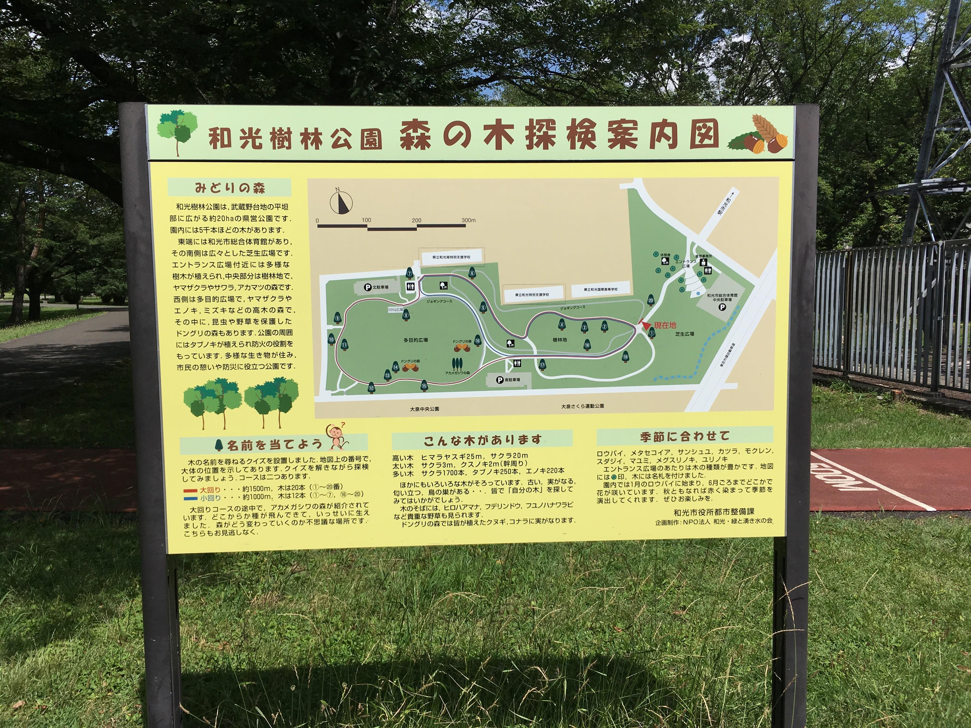 埼玉県営和光樹林公園森の木探検案内図