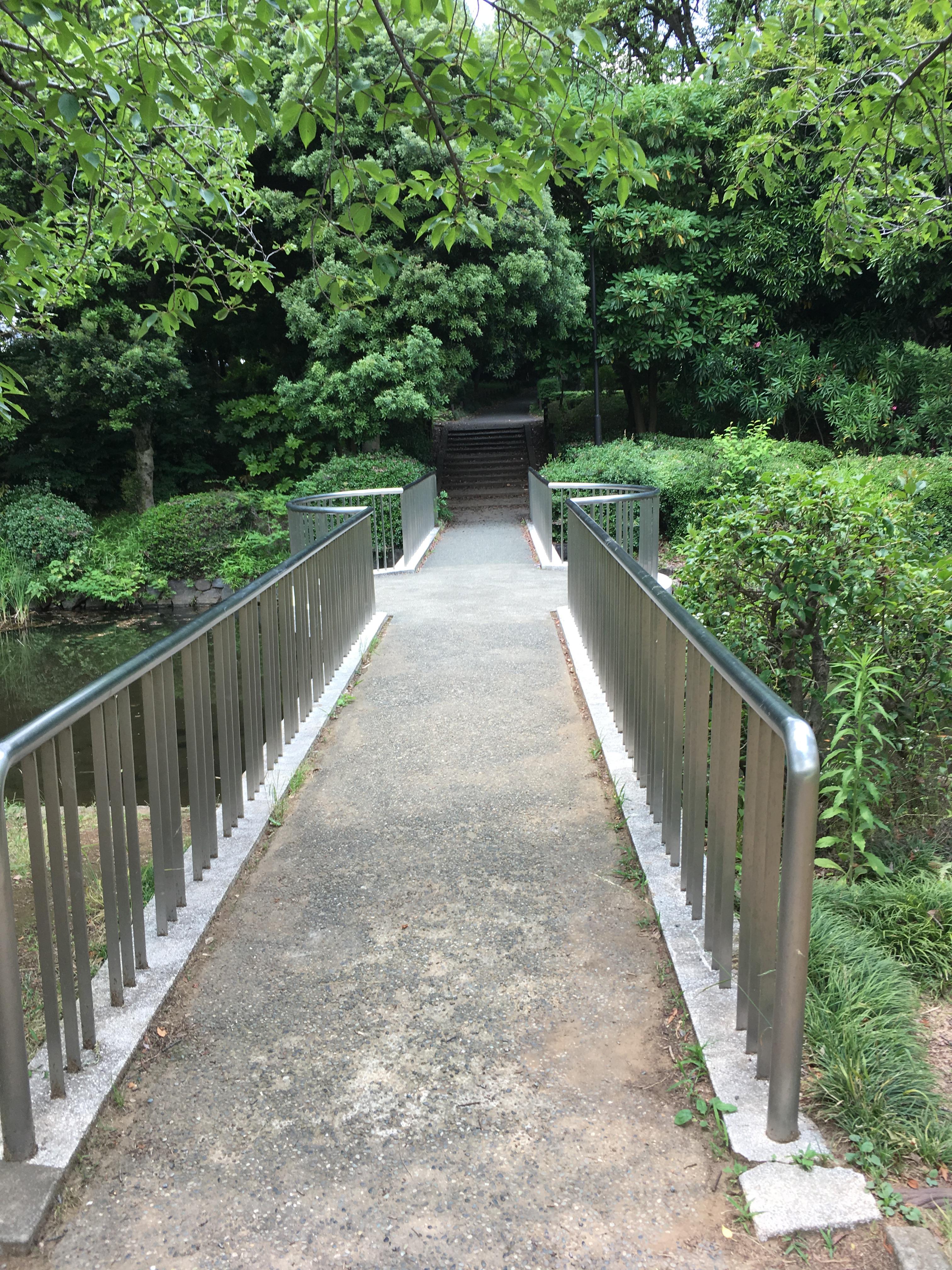 北の丸公園の橋