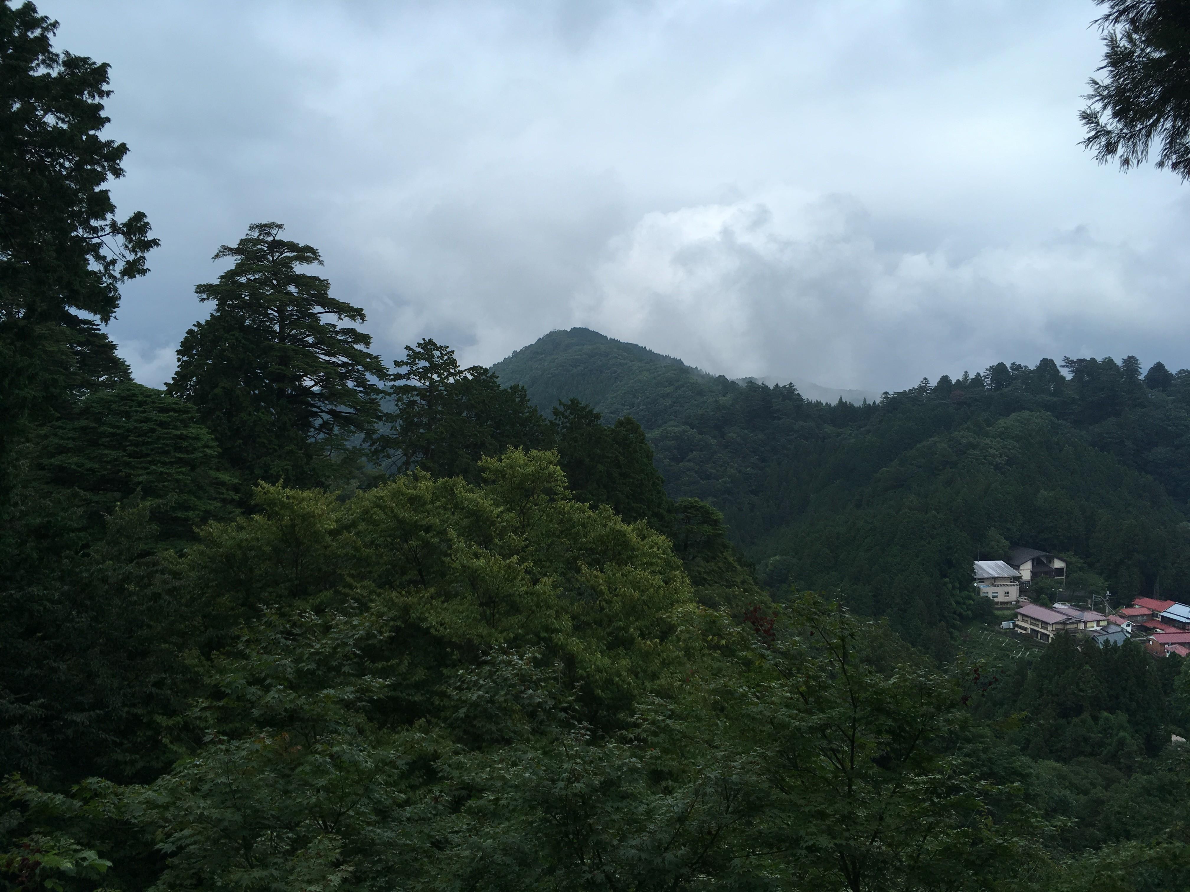 御岳ビジターセンター周辺
