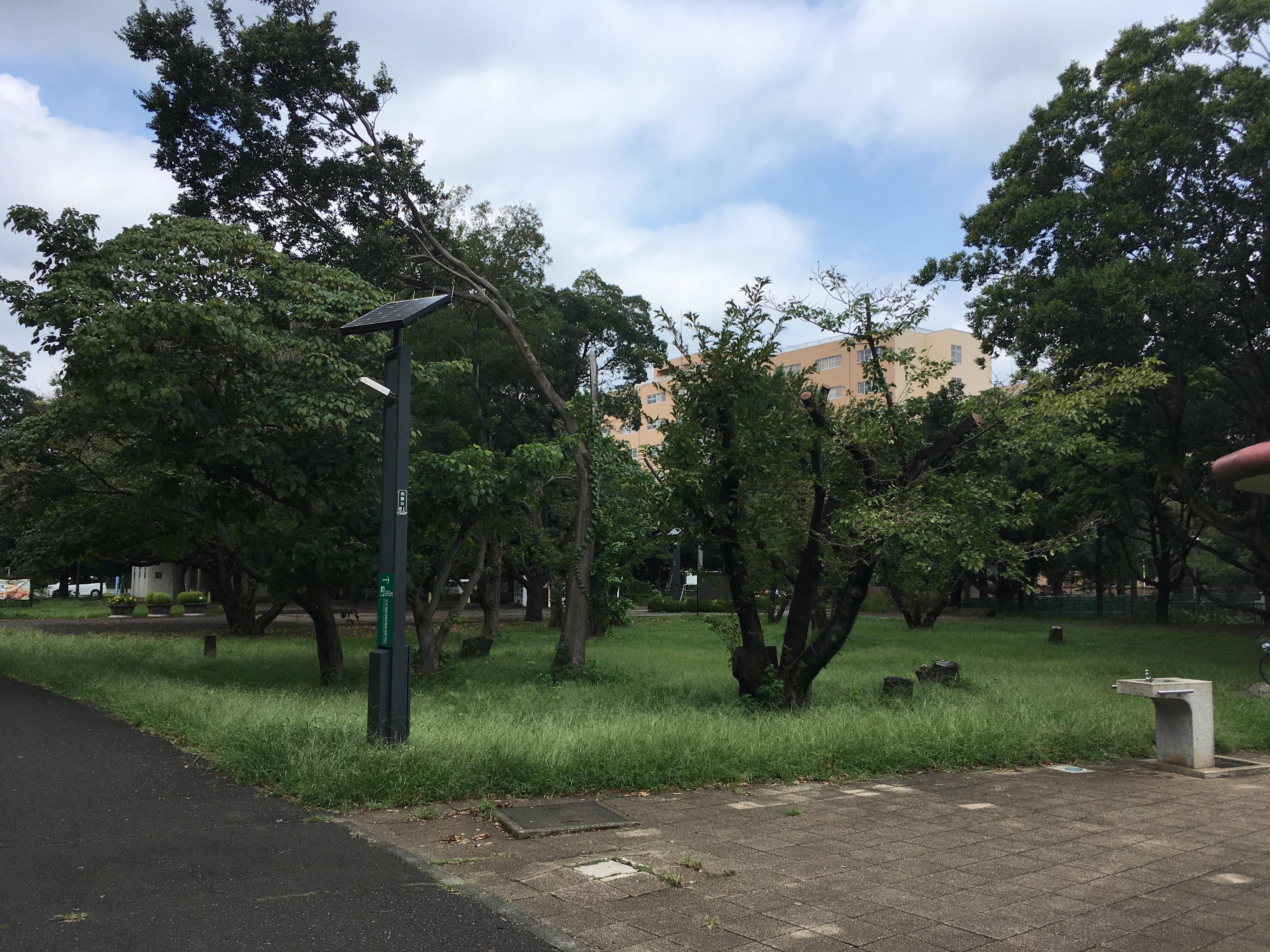 和光樹林公園休憩所
