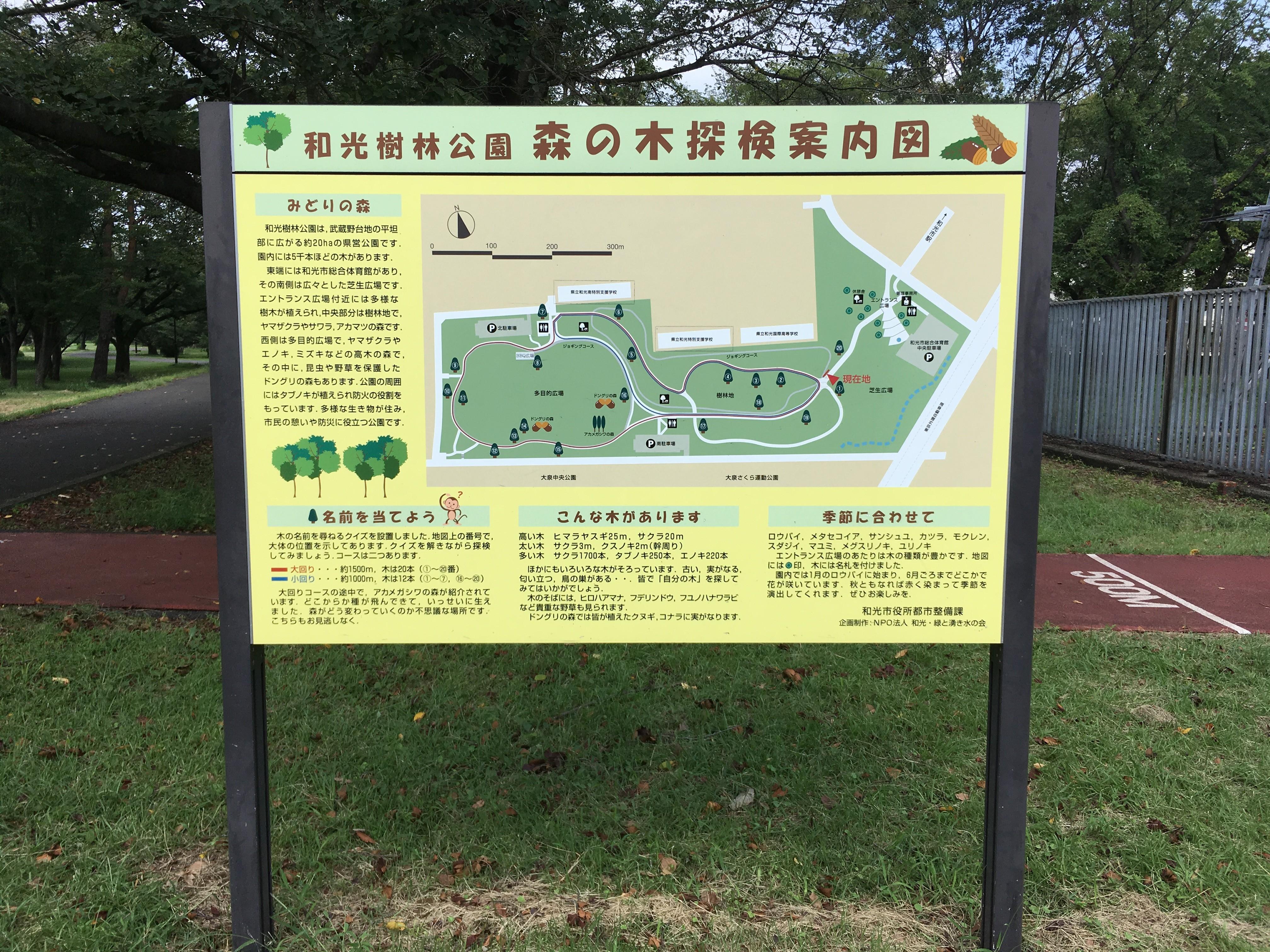 和光樹林公園森の木探検案内図