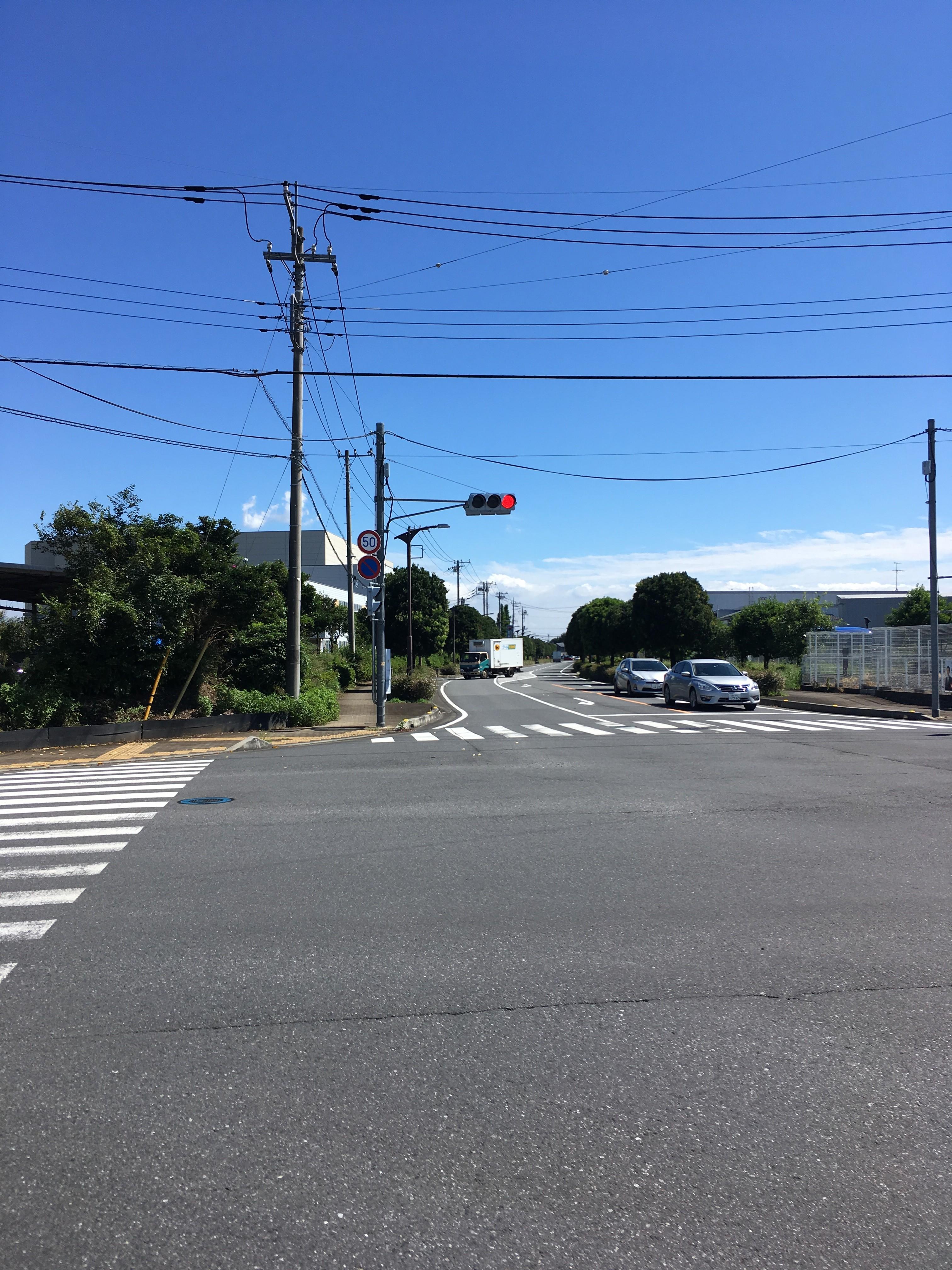 山田獣医科病院周辺