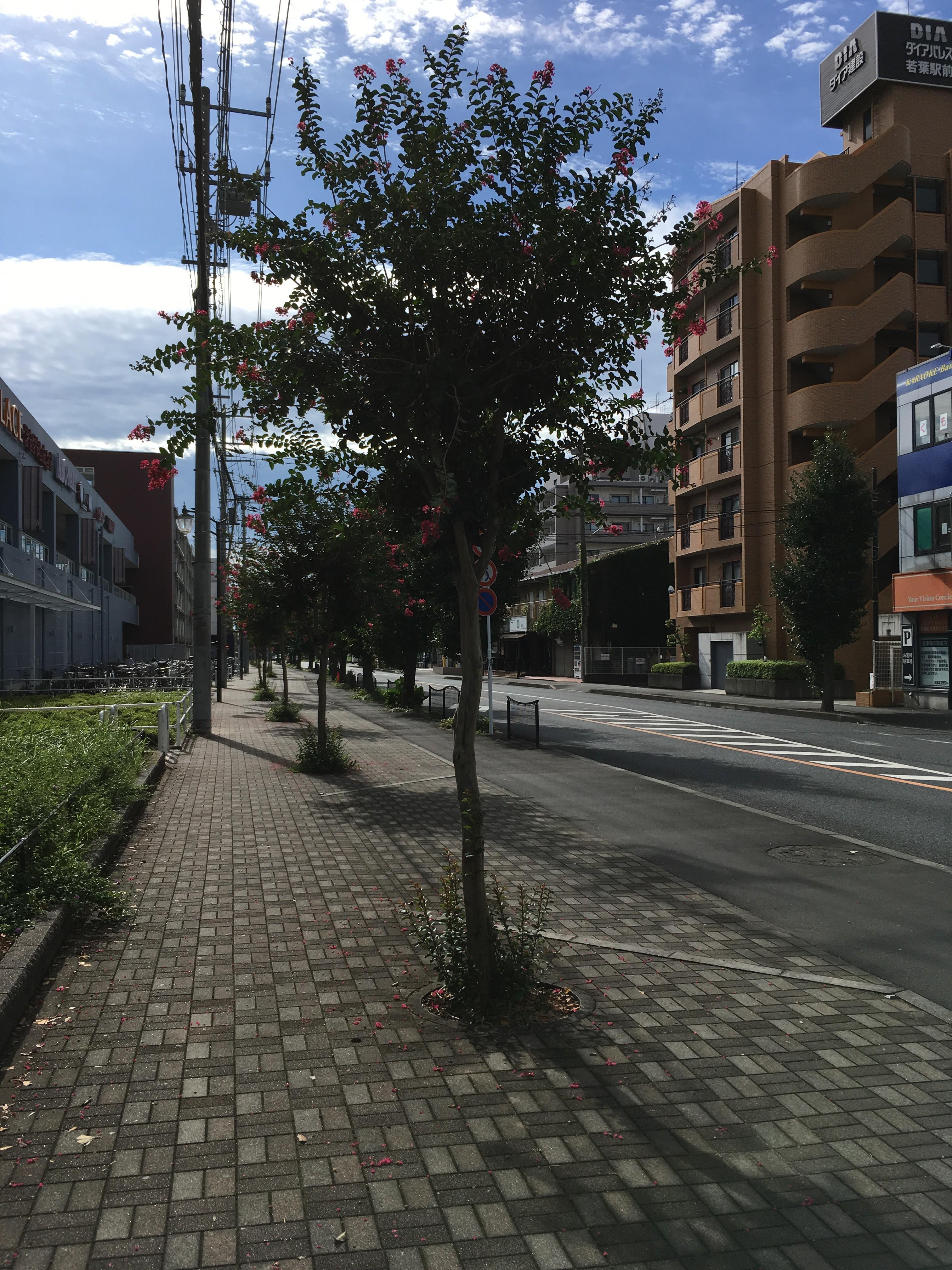 鶴ヶ島市民推進活動センター(スタート)