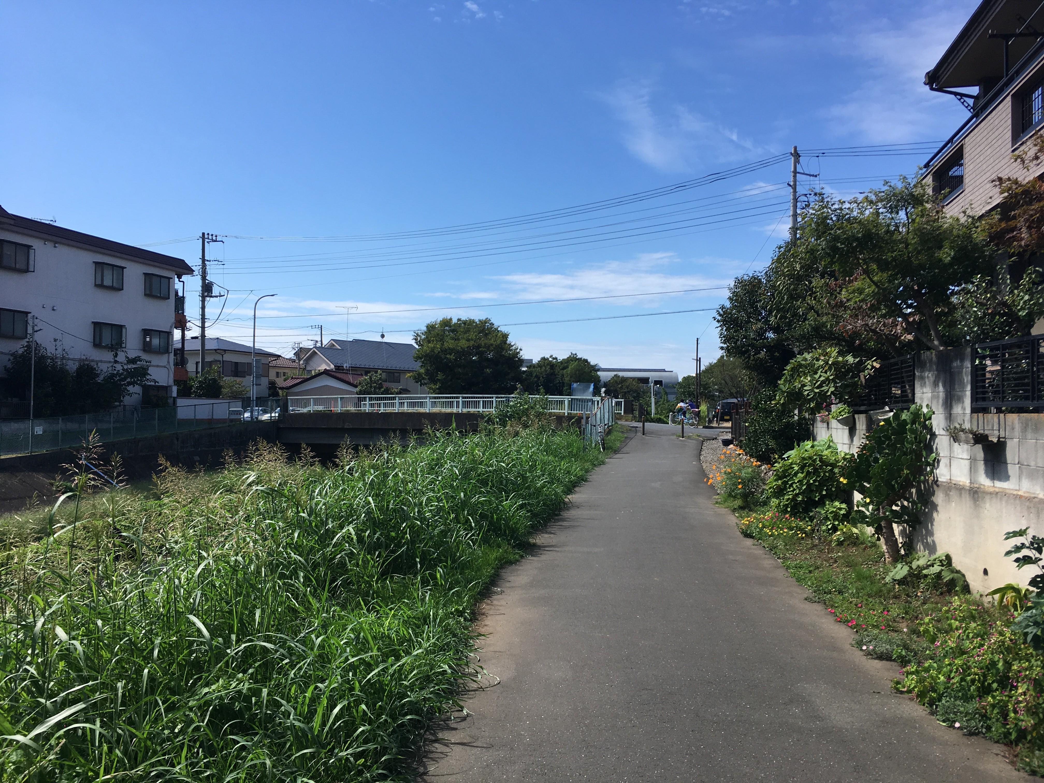 黒目川神宝大橋(東京都道・埼玉県道24号練馬所沢線)