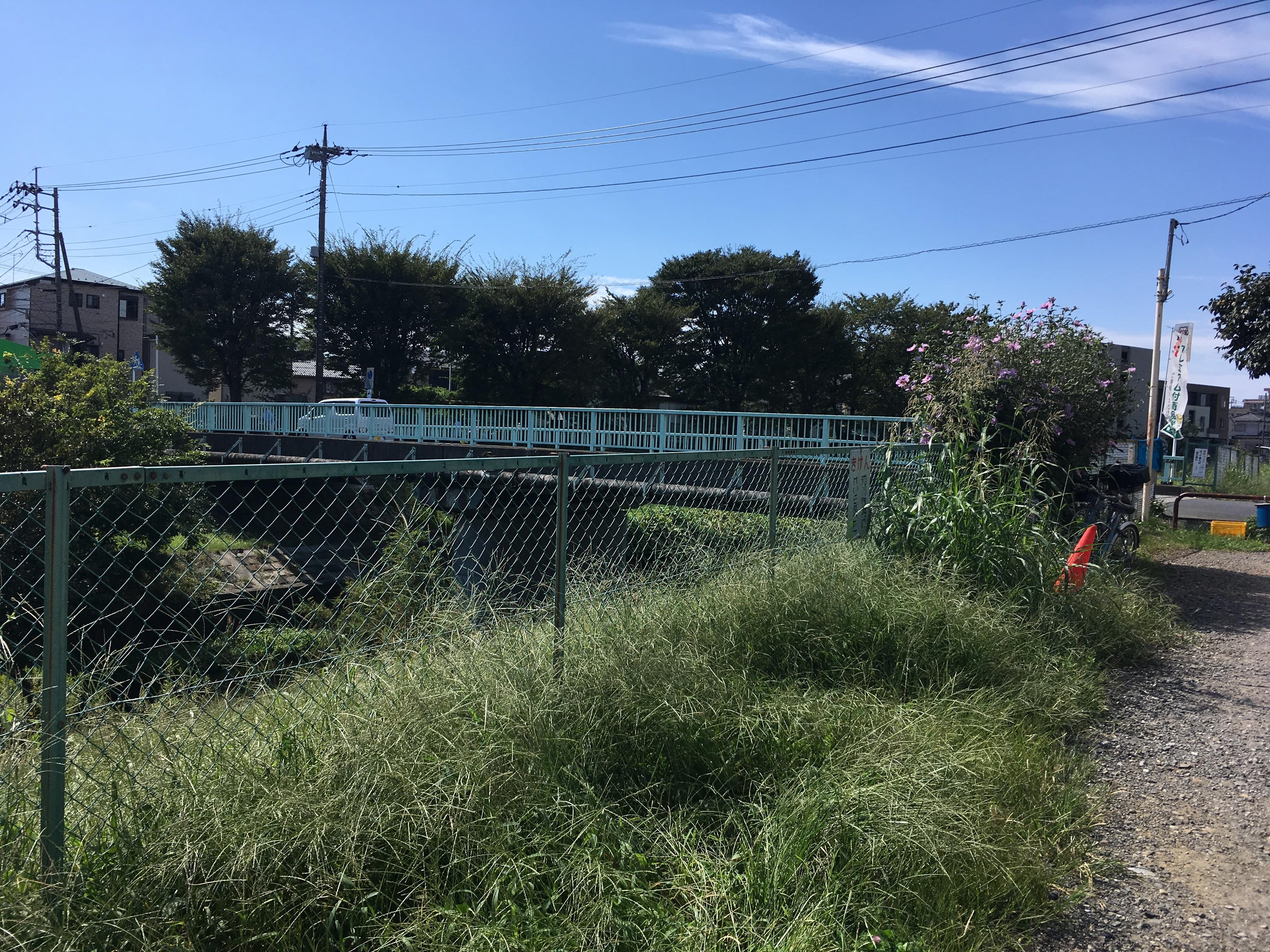 黒目川貝沼橋(石神緑地通り)
