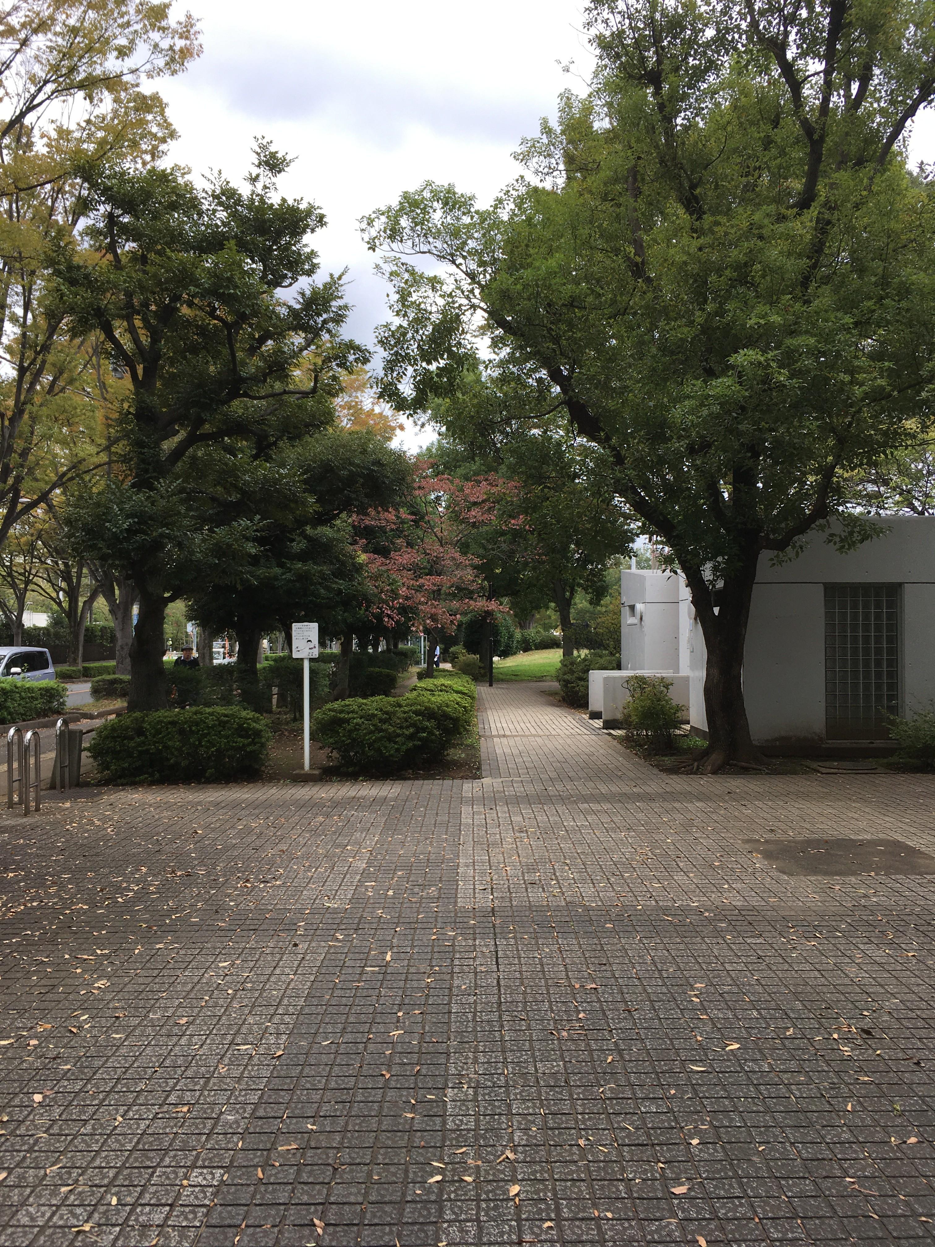 朝霞中央公園