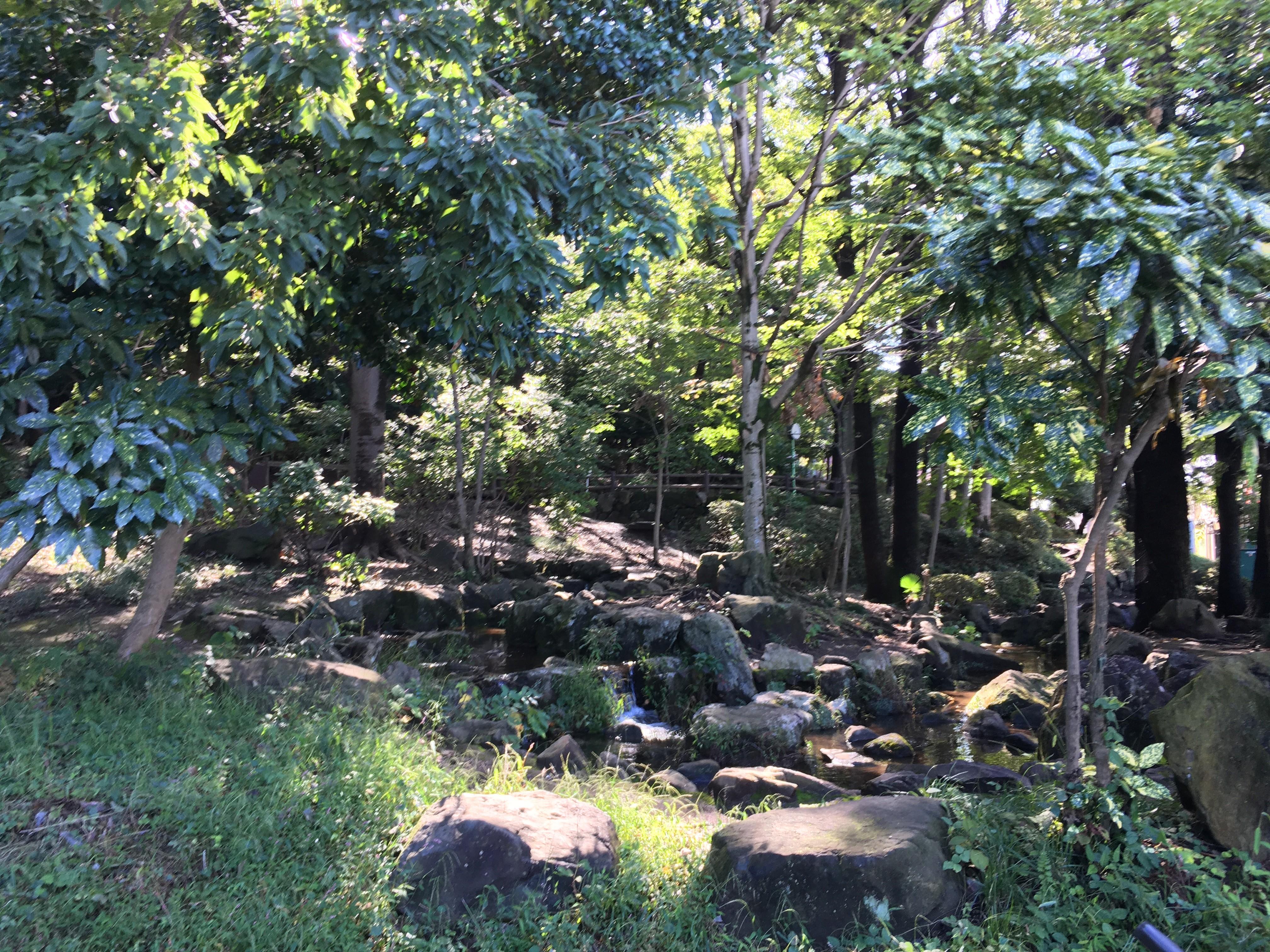 滝の根公園
