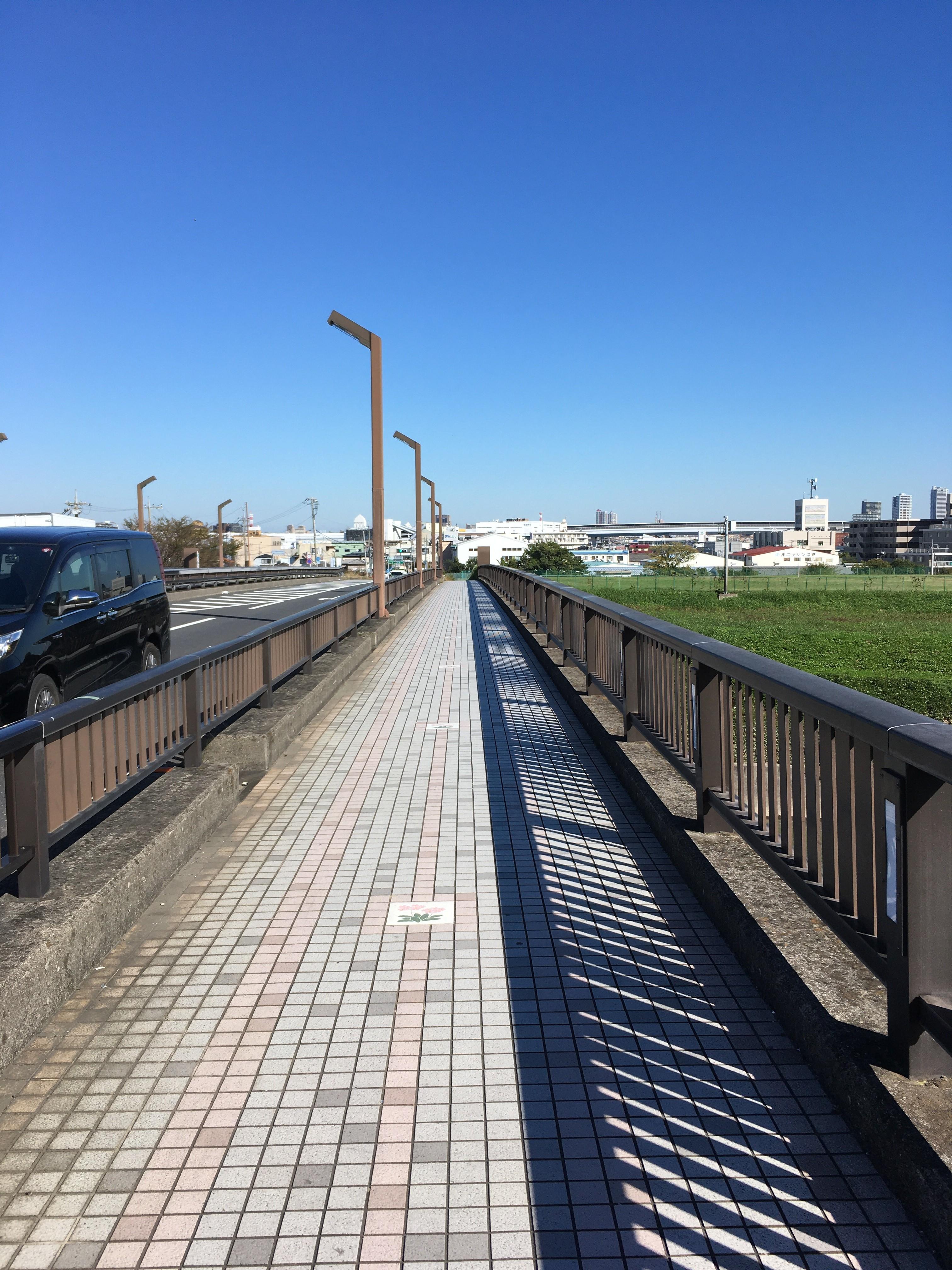 さくら草橋