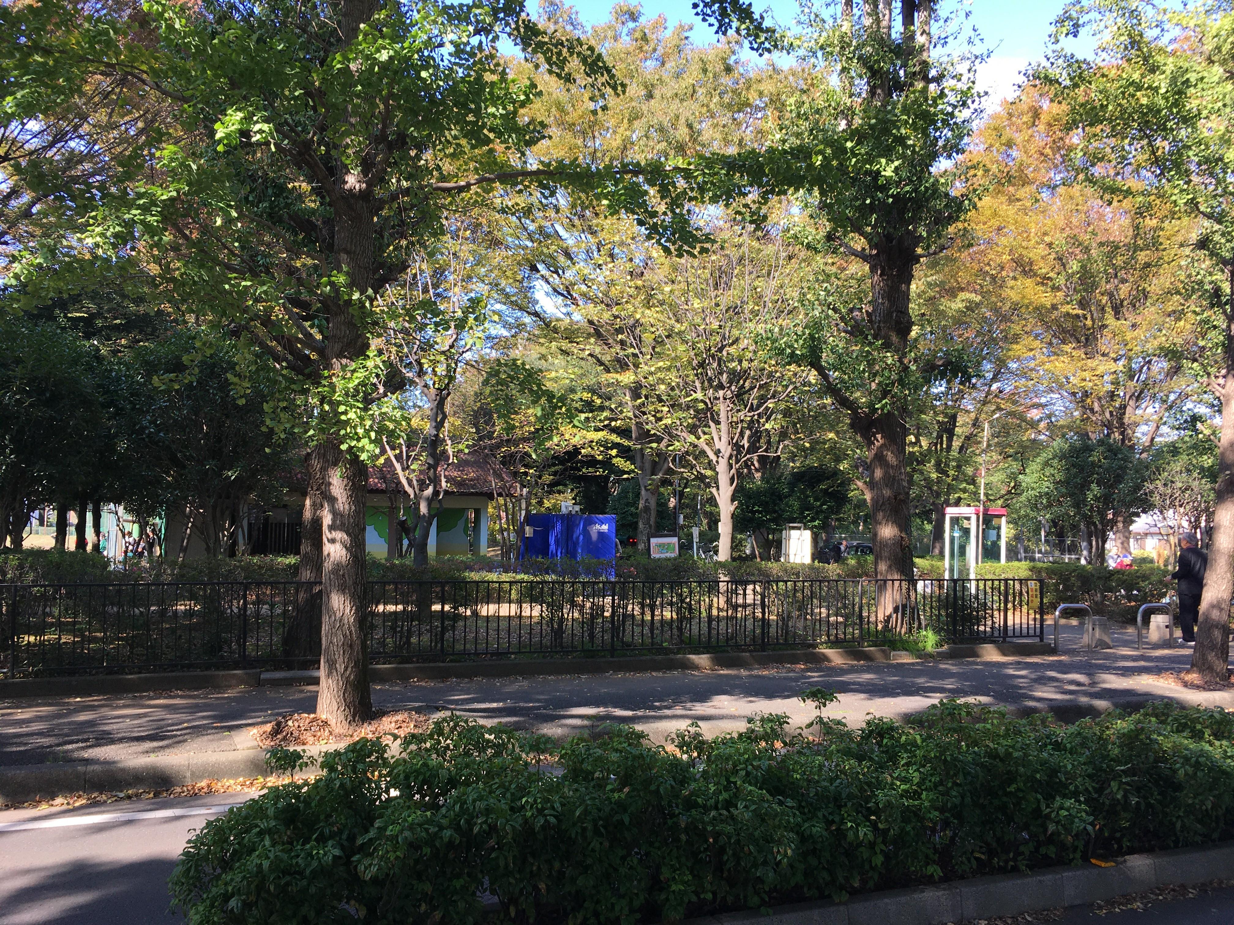 青葉台公園周辺