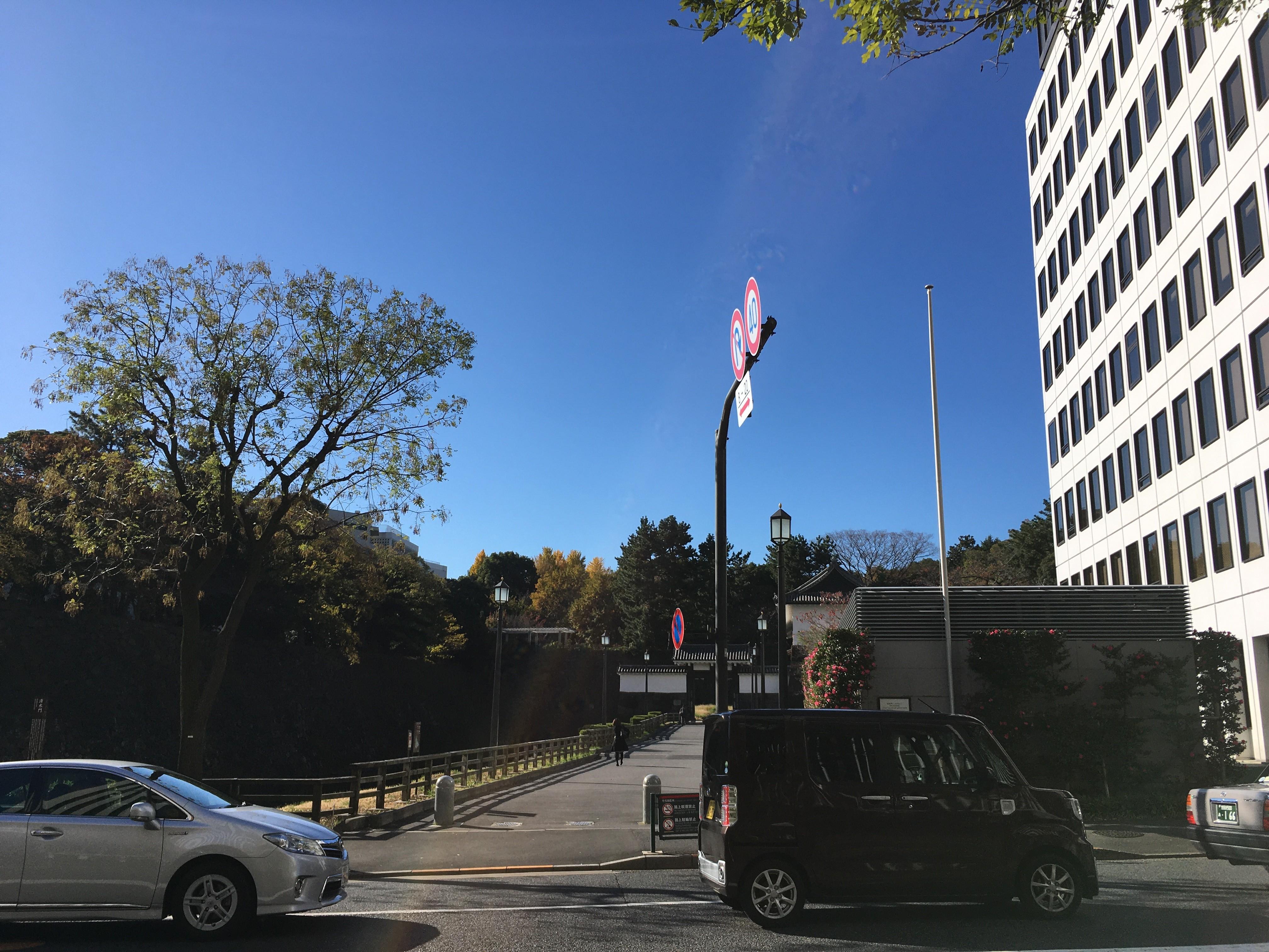 千代田区役所から清水門を眺める