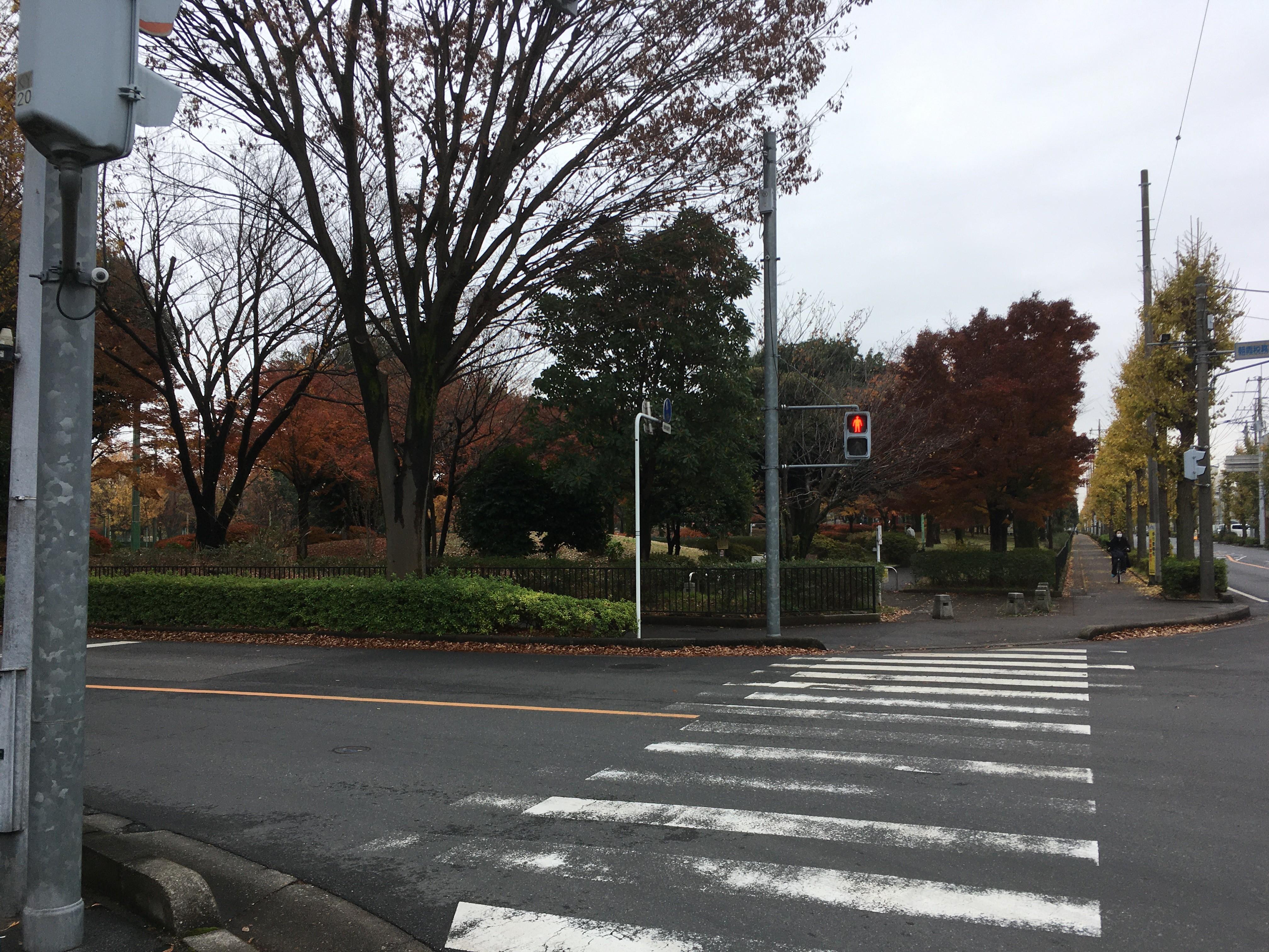 朝霞税務署入口交差点(城山通り)